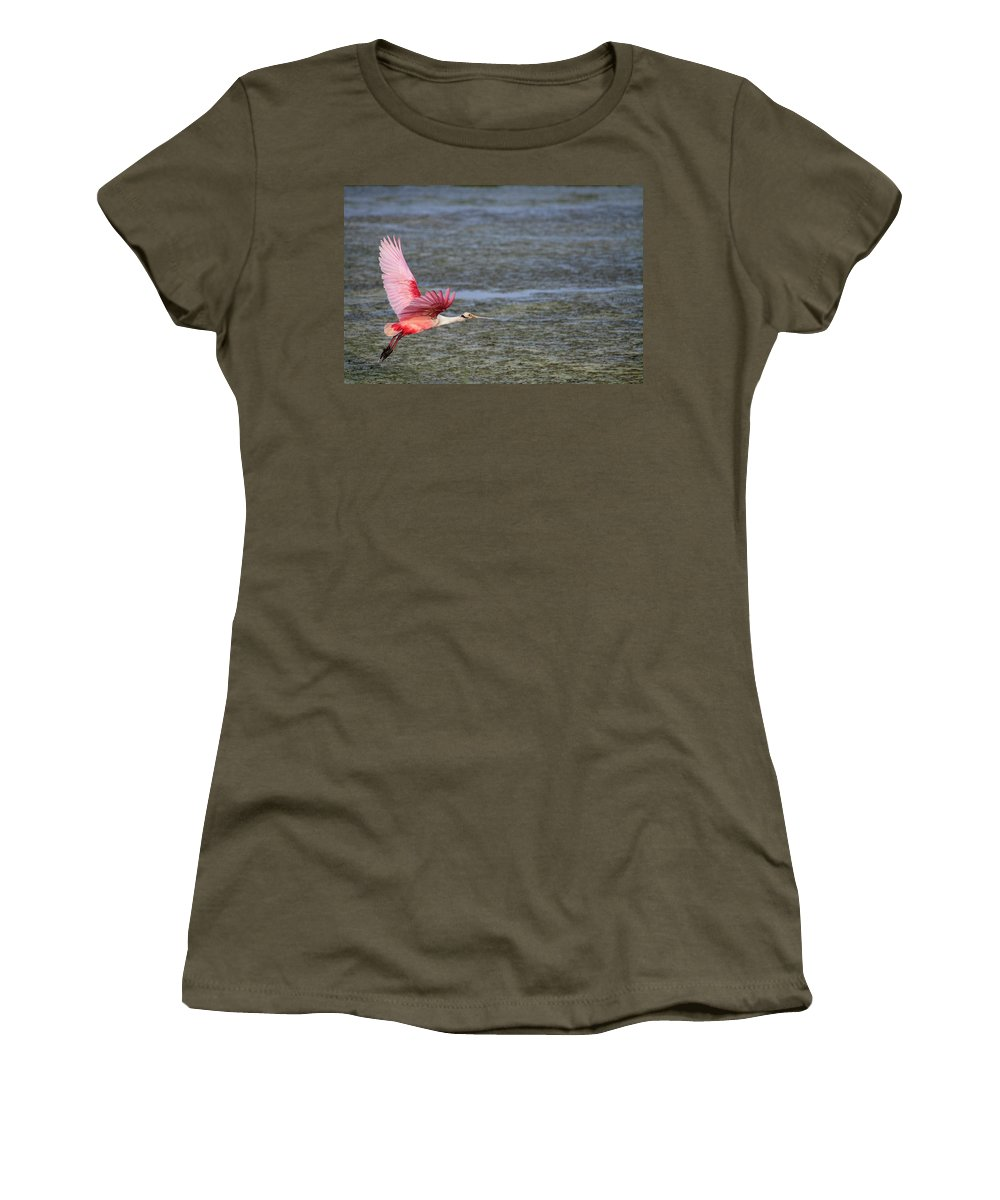 Roseate Women's T-Shirt featuring the photograph Roseate Spoonbill by Doc Hafferty
