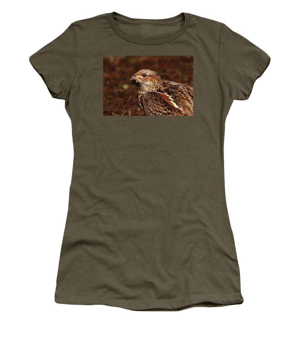 Grouse Women's T-Shirt featuring the photograph Ruffed Grouse by Bruce J Robinson