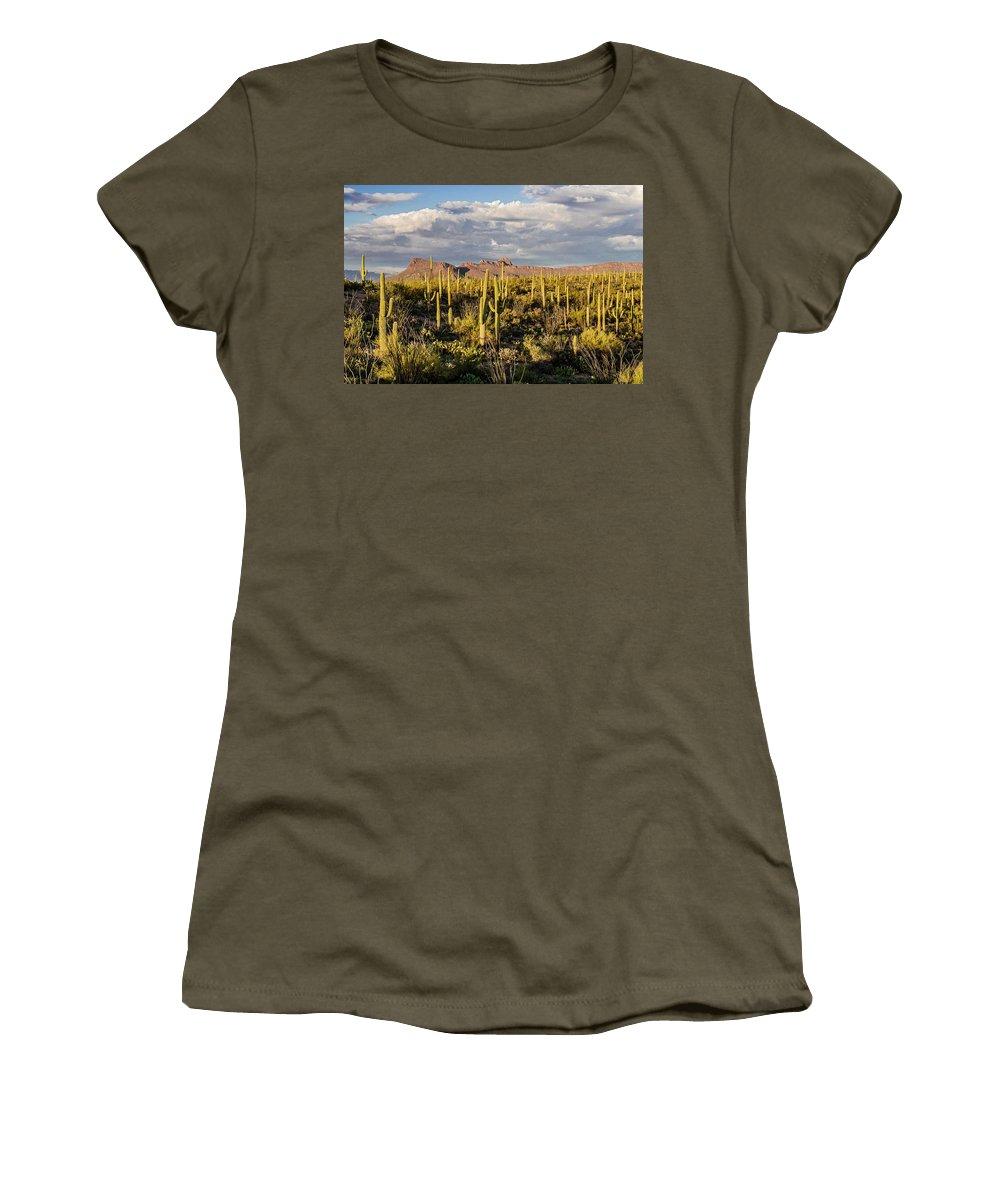 Saguaros Women's T-Shirt (Athletic Fit) featuring the photograph Saguaronatlparkeveninglight by Dale Balmer
