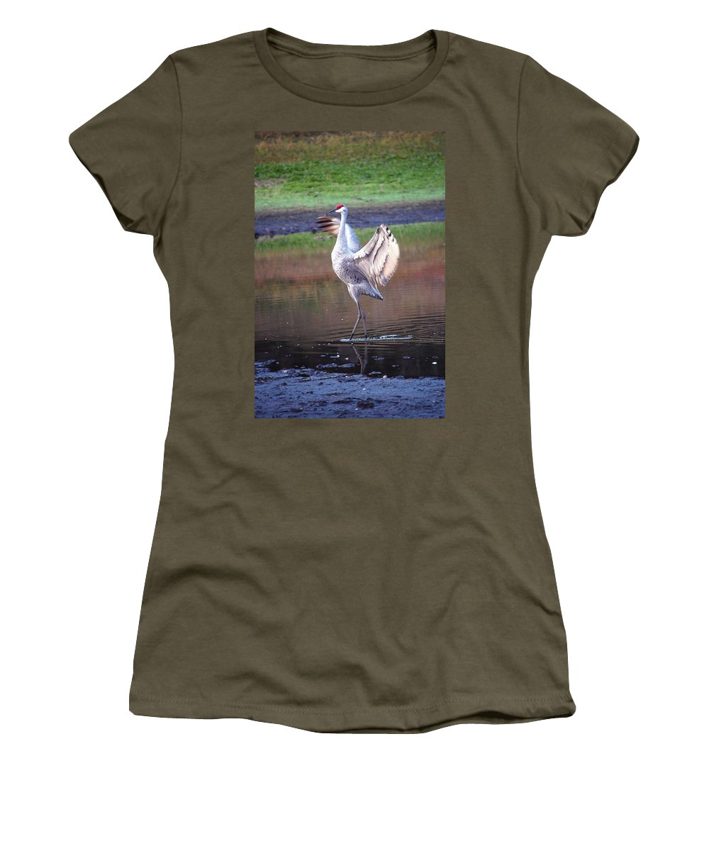 Sandhill Women's T-Shirt featuring the digital art Sandhill Crane Painted by Robert Meanor