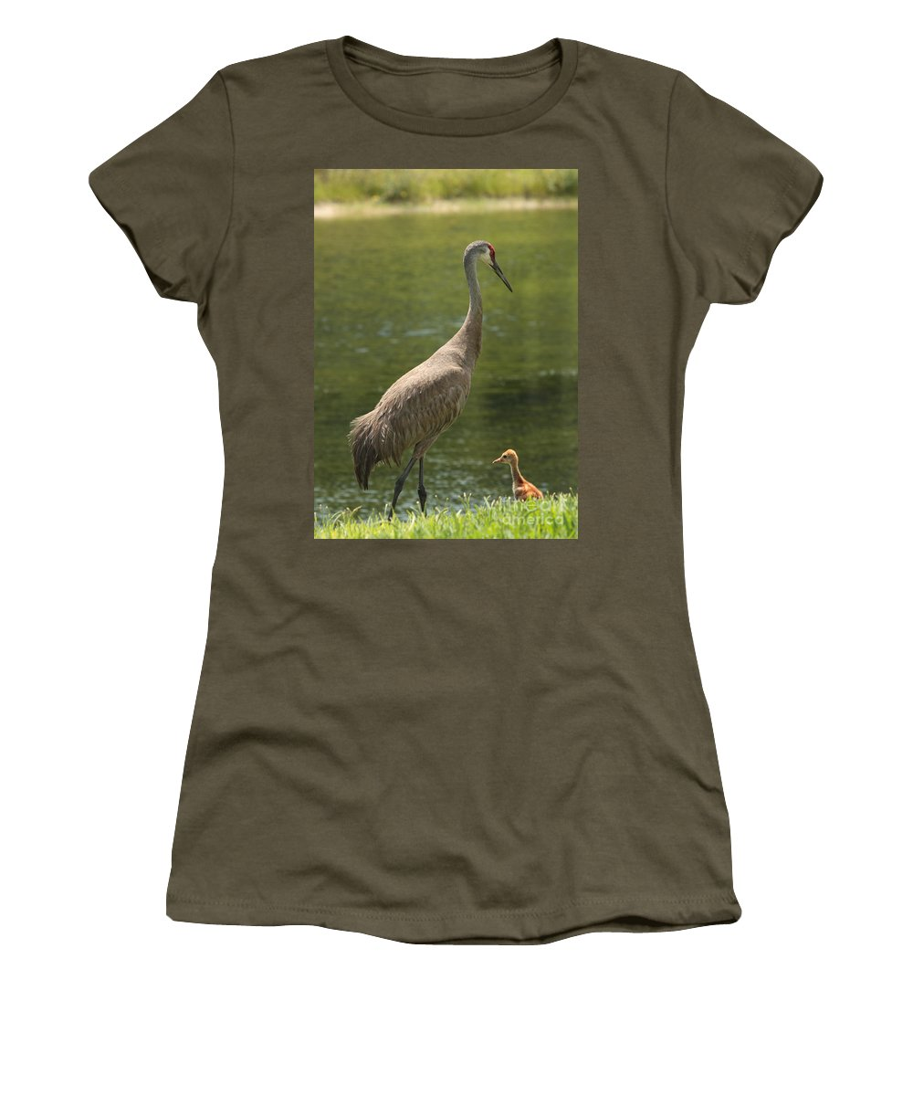 Ponds Women's T-Shirt featuring the photograph Sandhill Crane With Baby Chick by Carol Groenen