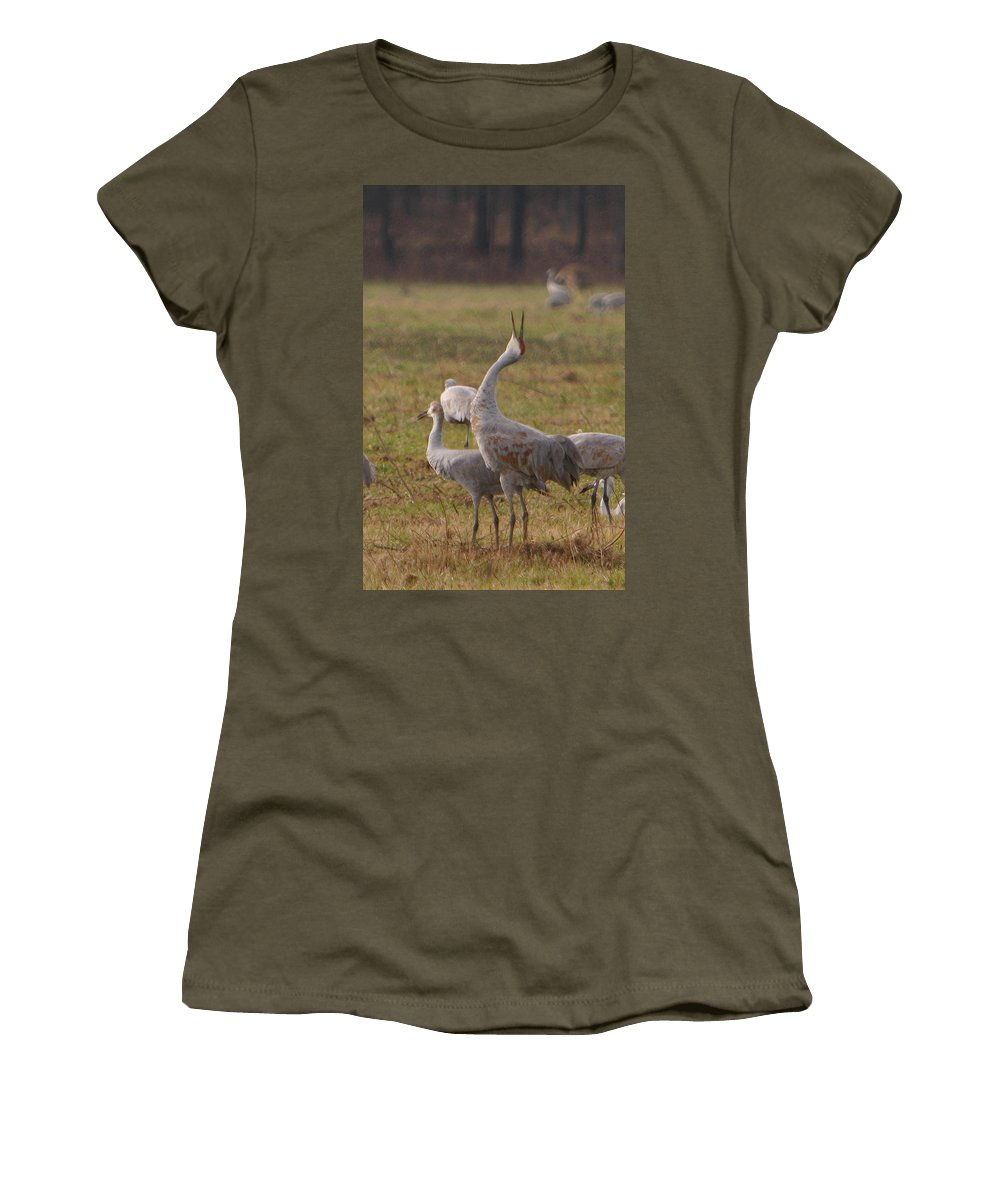 Sandhill Crane Birds Mating Calliing Nature Wildlife Photography Photograph Women's T-Shirt featuring the photograph Sandhill Delight by Shari Jardina