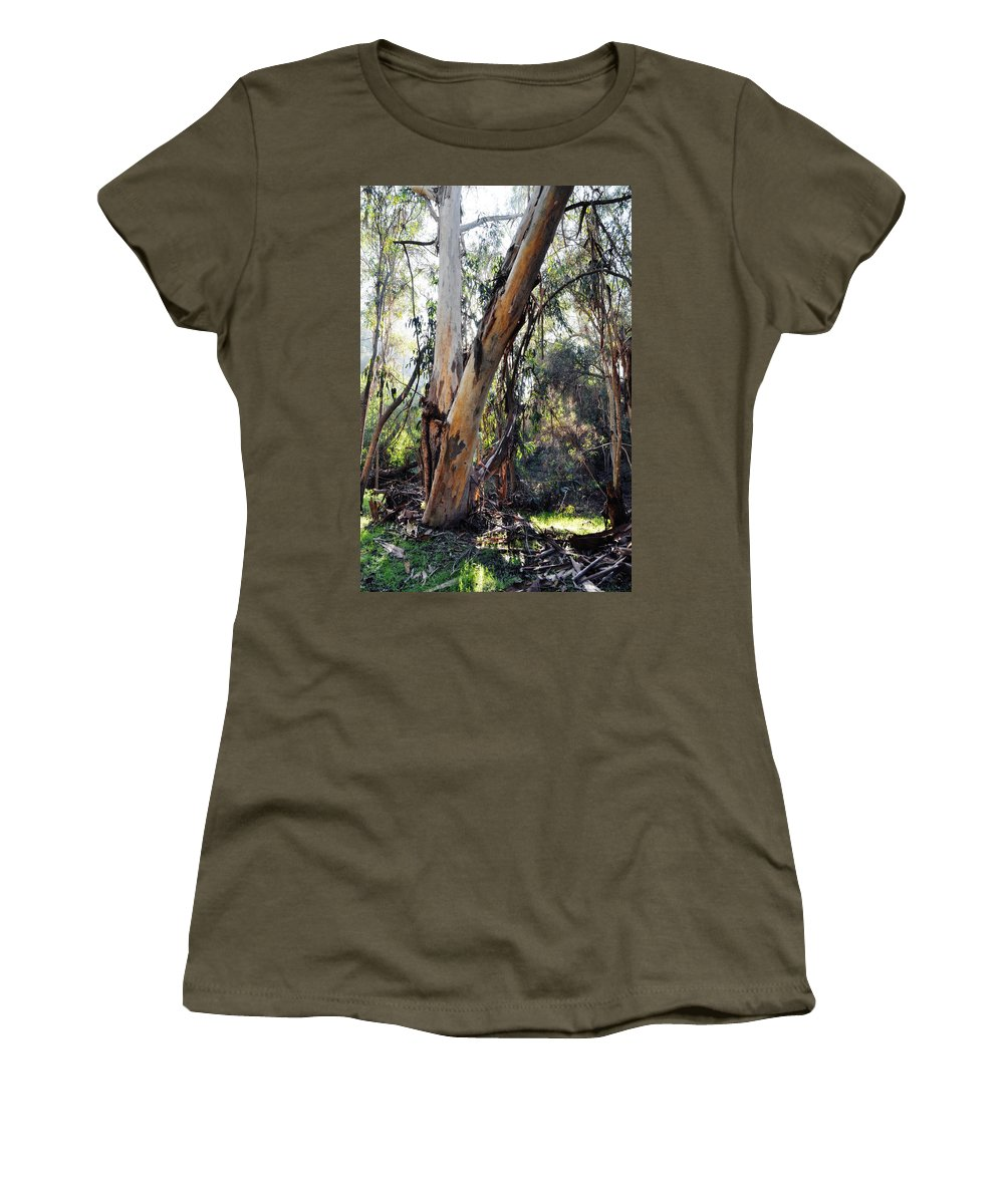 Santa Barbara Women's T-Shirt (Athletic Fit) featuring the photograph Santa Barbara Eucalyptus Forest by Kyle Hanson