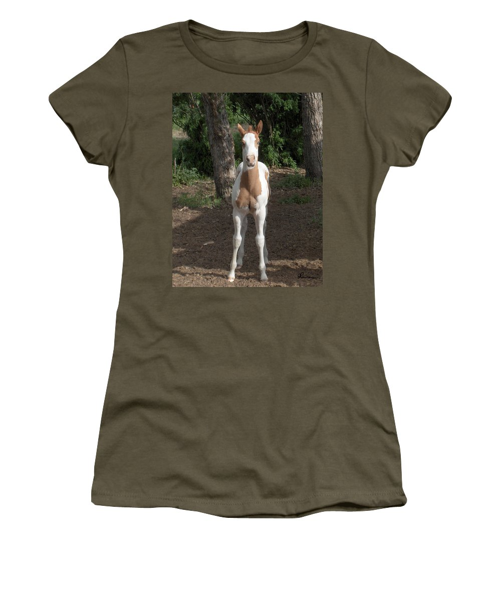 Horse Horses Colt Filly Mare Stallion Foal Ranch Farm Herd Paint Attitude Women's T-Shirt featuring the photograph Sassy Filly by Andrea Lawrence
