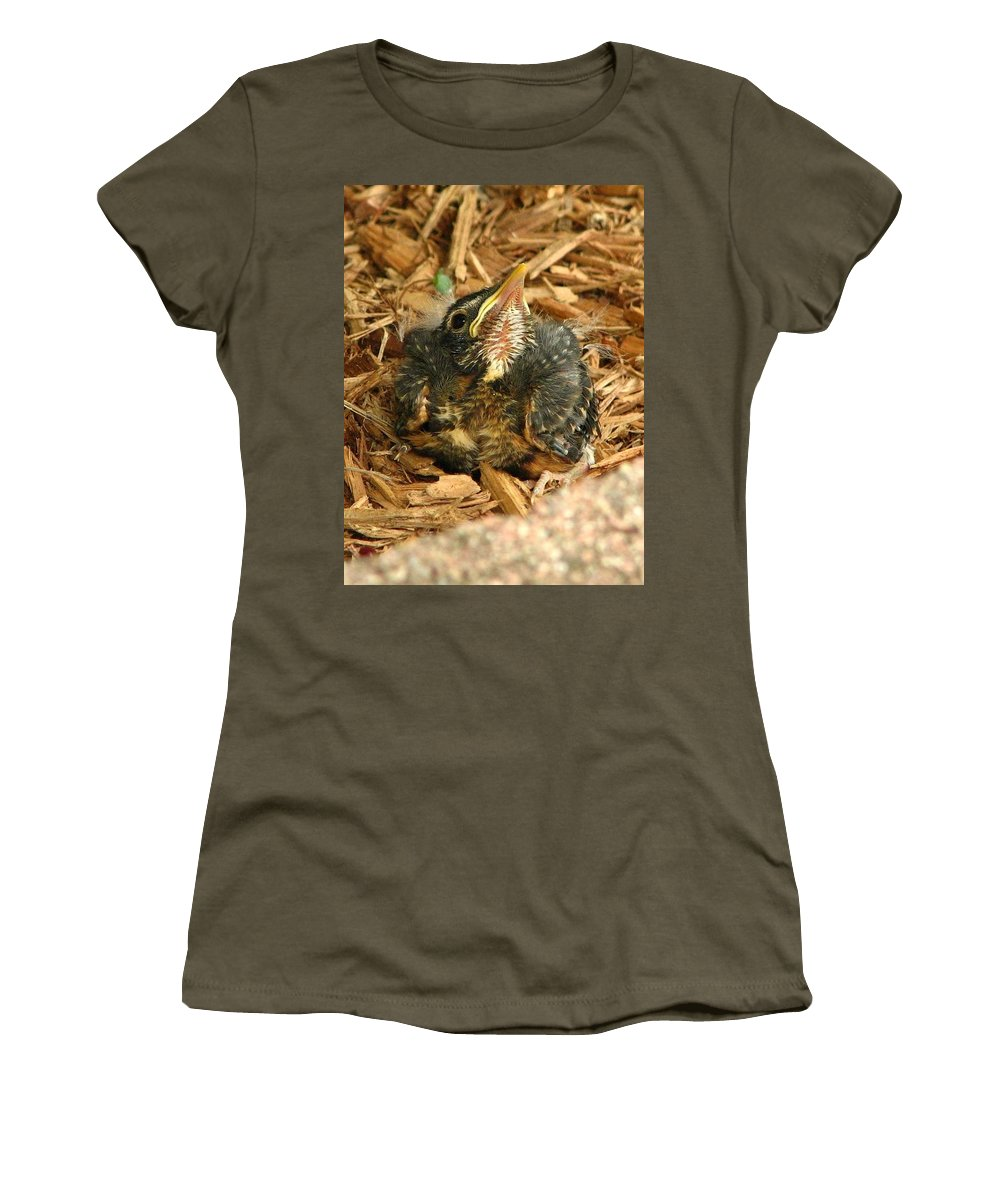 Bird Species Women's T-Shirt featuring the photograph Scout by Amanda Kessel