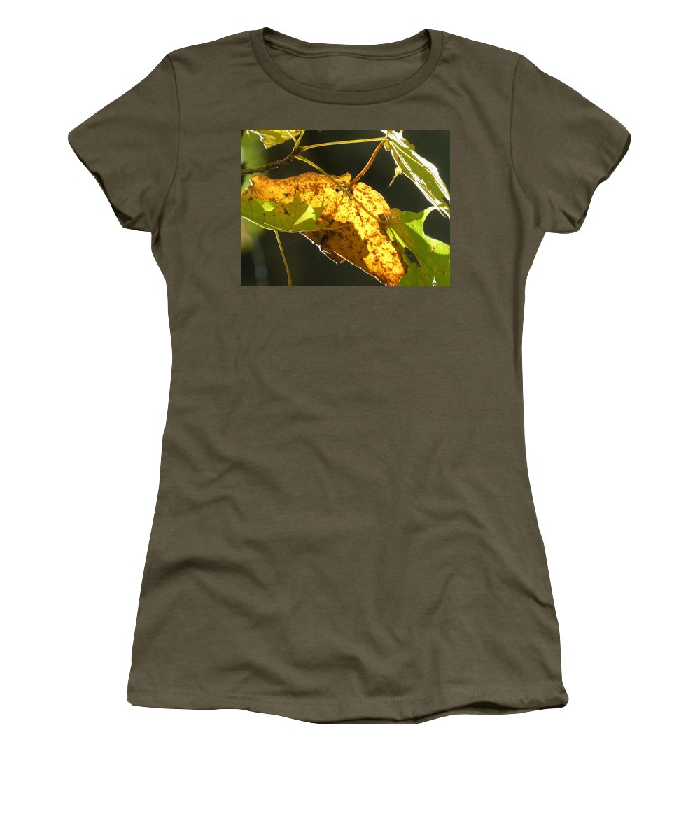 Spencer Gorge Ontario Autumn Leaves Yellow Brown Spots Maple Women's T-Shirt featuring the photograph Seasons Change by The Sangsters