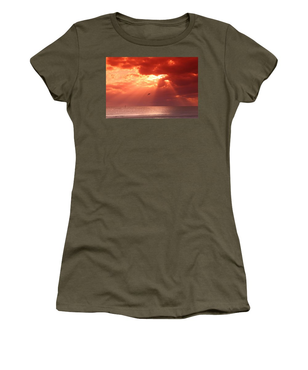 Siesta Key Women's T-Shirt featuring the photograph Siesta Key Pelican by DJ Florek