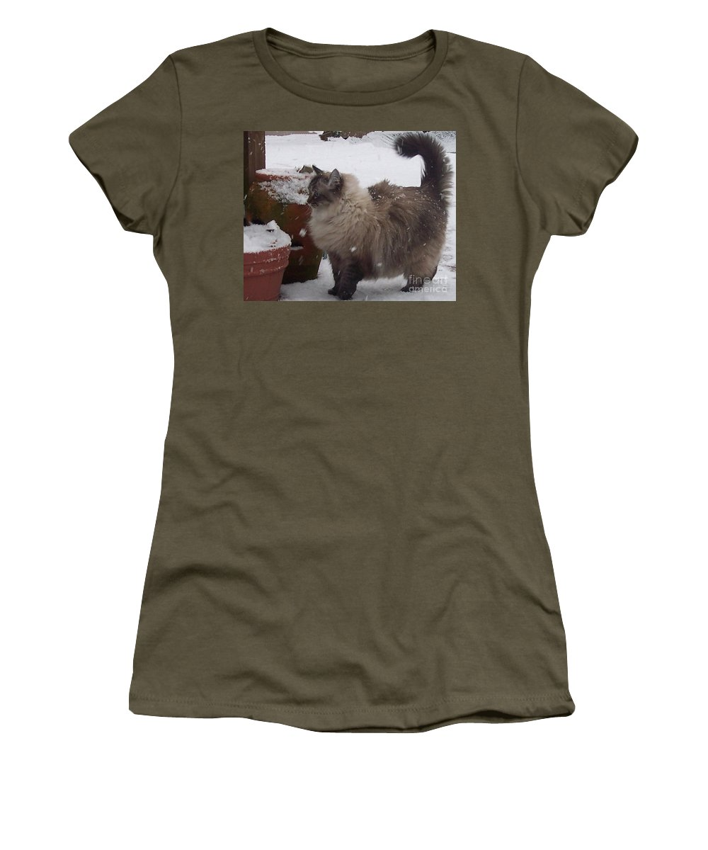 Cats Women's T-Shirt featuring the photograph Snow Kitty by Debbi Granruth