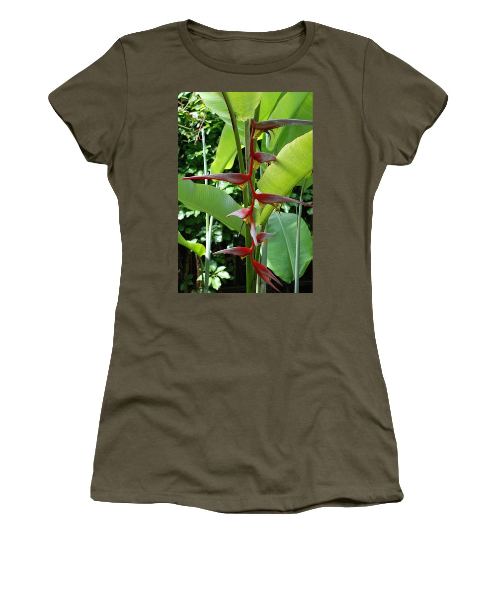 Macro Women's T-Shirt (Athletic Fit) featuring the photograph Spike Tree by Rob Hans