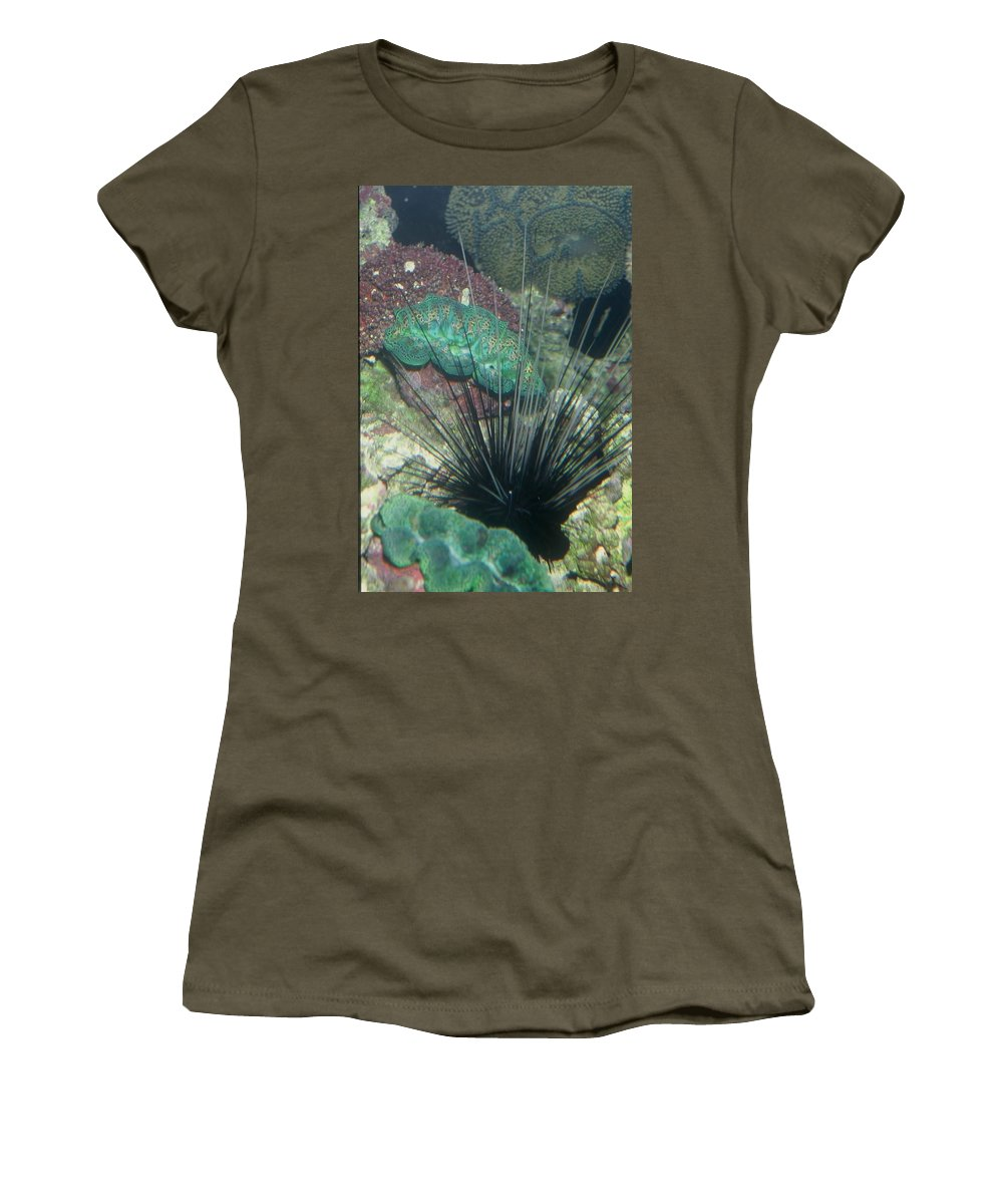 Nature Women's T-Shirt (Athletic Fit) featuring the photograph Spiny by Kimberly Mohlenhoff