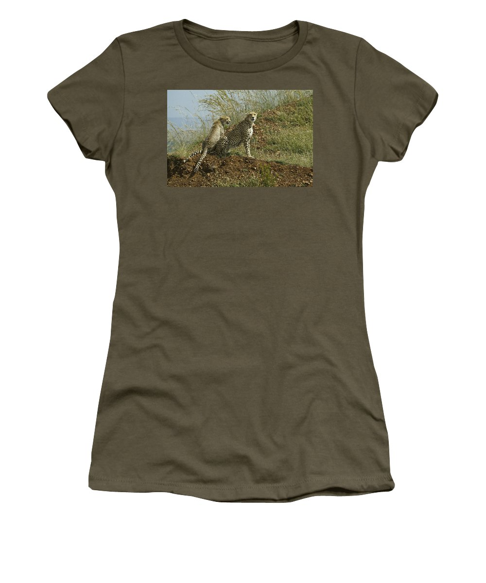 Africa Women's T-Shirt featuring the photograph Spotted Cats by Michele Burgess