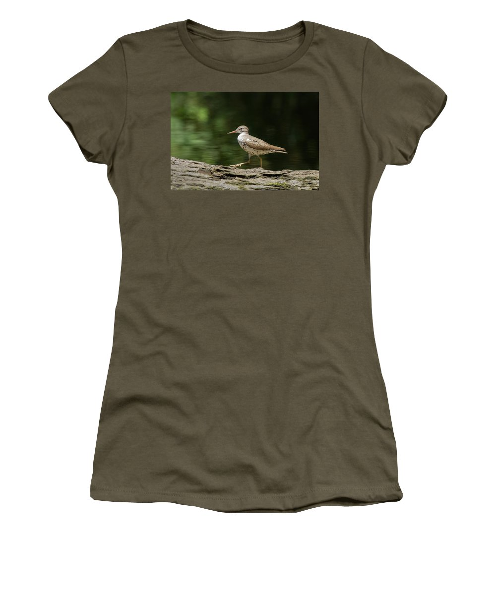 Sandpiper Women's T-Shirt (Athletic Fit) featuring the photograph Spotted Sandpiper by Paul Rebmann