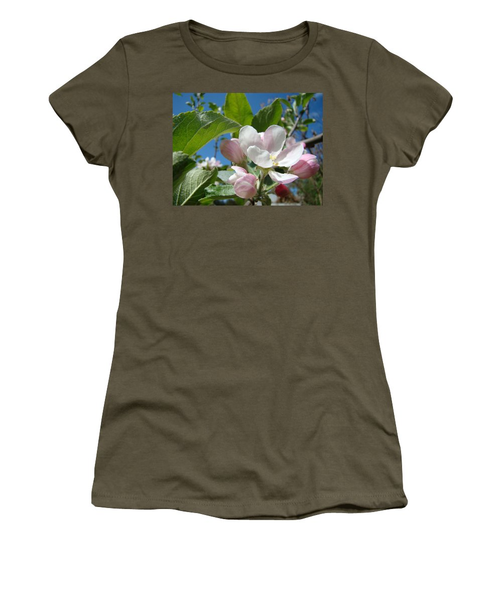 Apple Women's T-Shirt (Athletic Fit) featuring the photograph Spring Apple Blossoms Pink White Apple Trees Baslee Troutman by Baslee Troutman