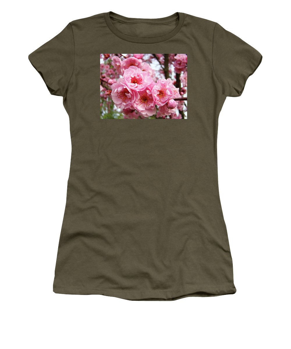 Blossom Women's T-Shirt featuring the photograph Spring Pink Tree Blossoms Art Prints Baslee Troutman by Baslee Troutman