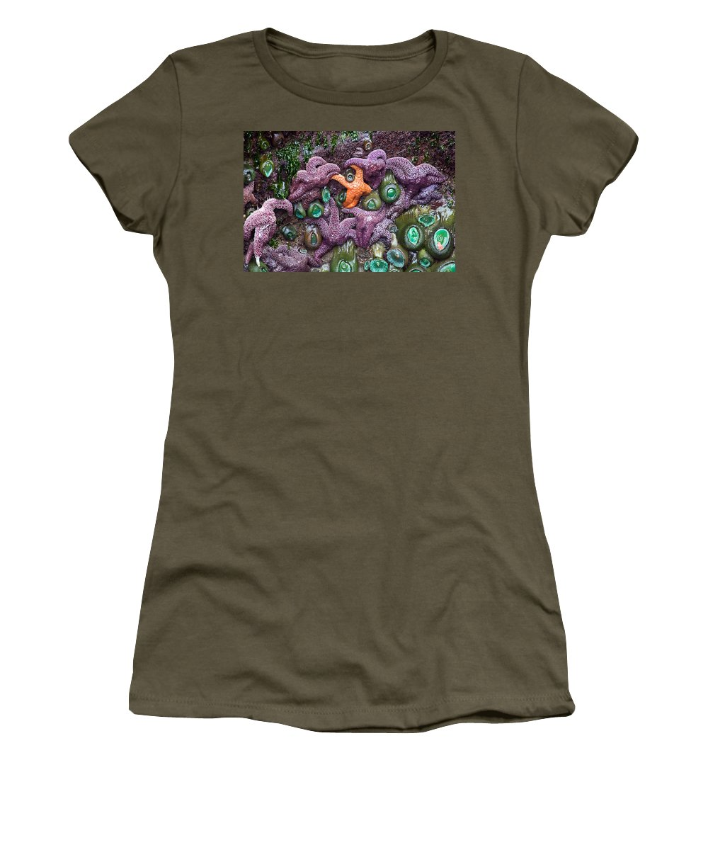 Starfish Women's T-Shirt featuring the photograph Standing Out by Randall Ingalls