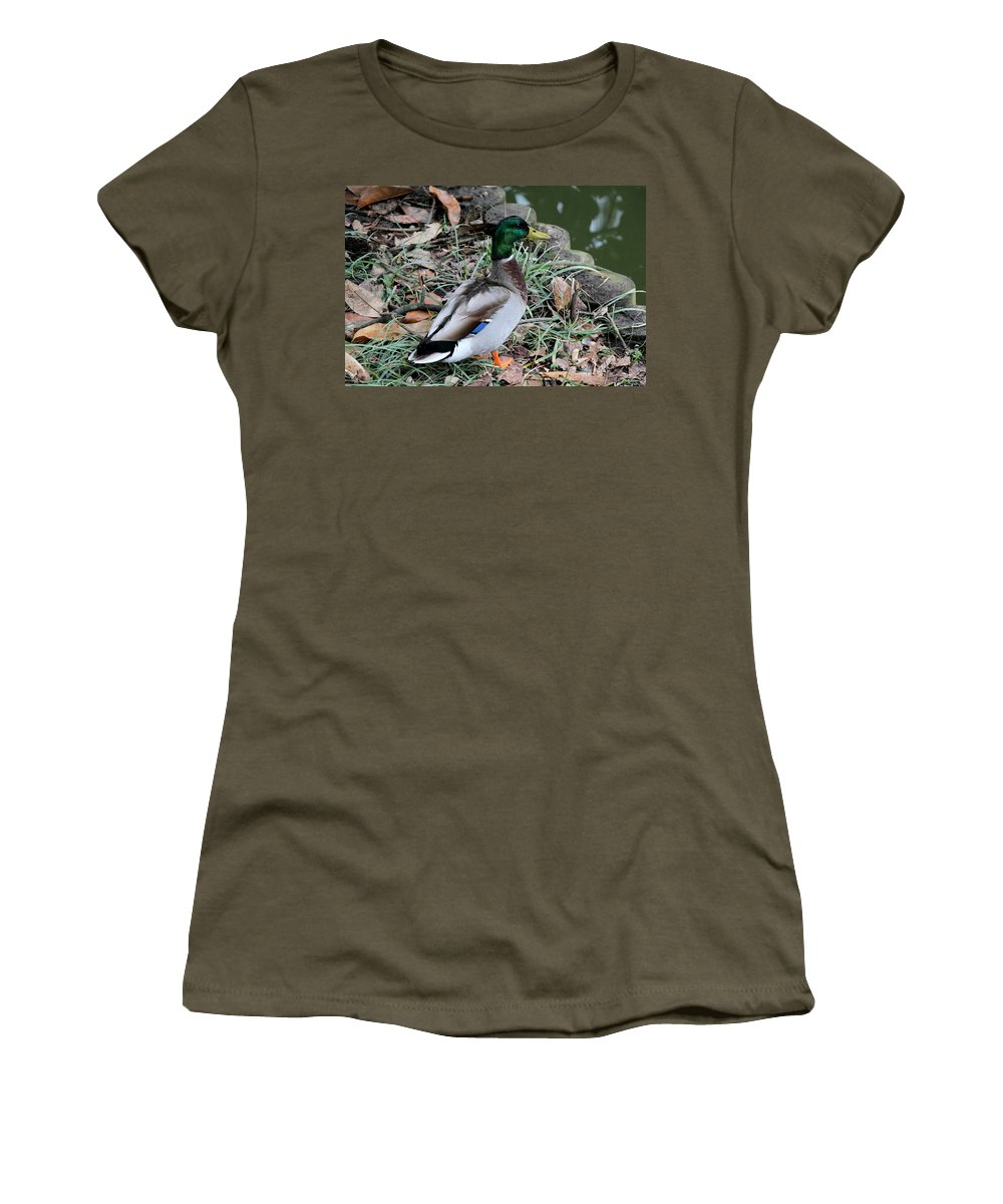 Sarah Duke Women's T-Shirt (Athletic Fit) featuring the photograph Mallard On Watch by Rand Wall
