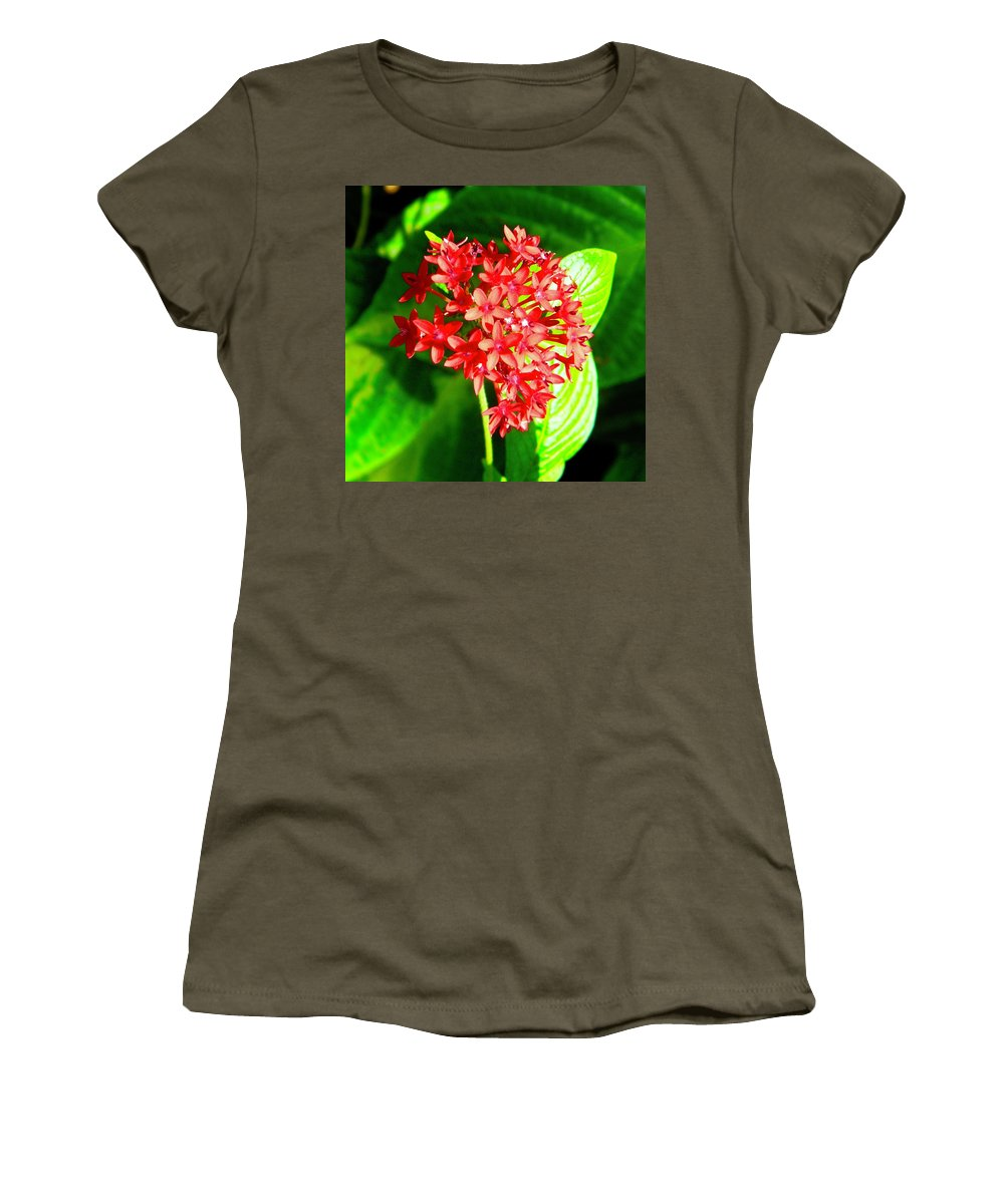 Star Women's T-Shirt featuring the photograph Star Cluster by Miguel Munoz