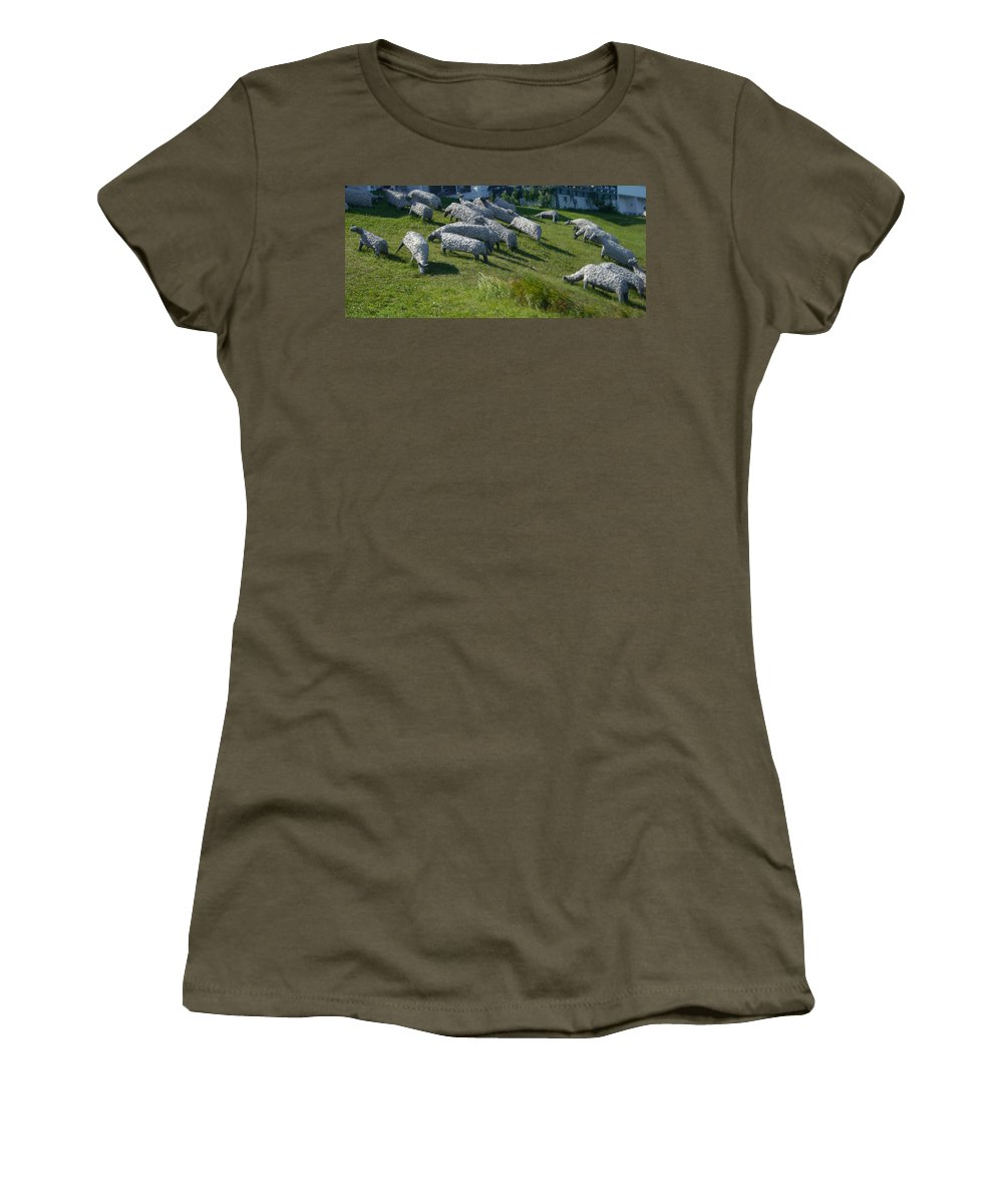 Sheep Women's T-Shirt (Athletic Fit) featuring the photograph Ste Flavie 002 by Line Gagne