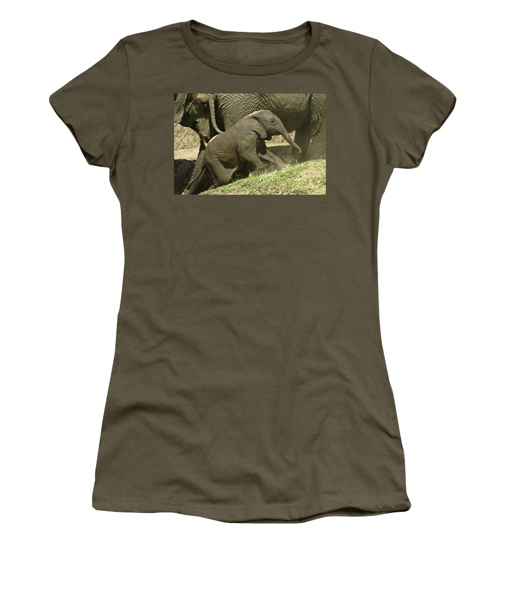 Africa Women's T-Shirt featuring the photograph Steep Climb For A Little Guy by Michele Burgess