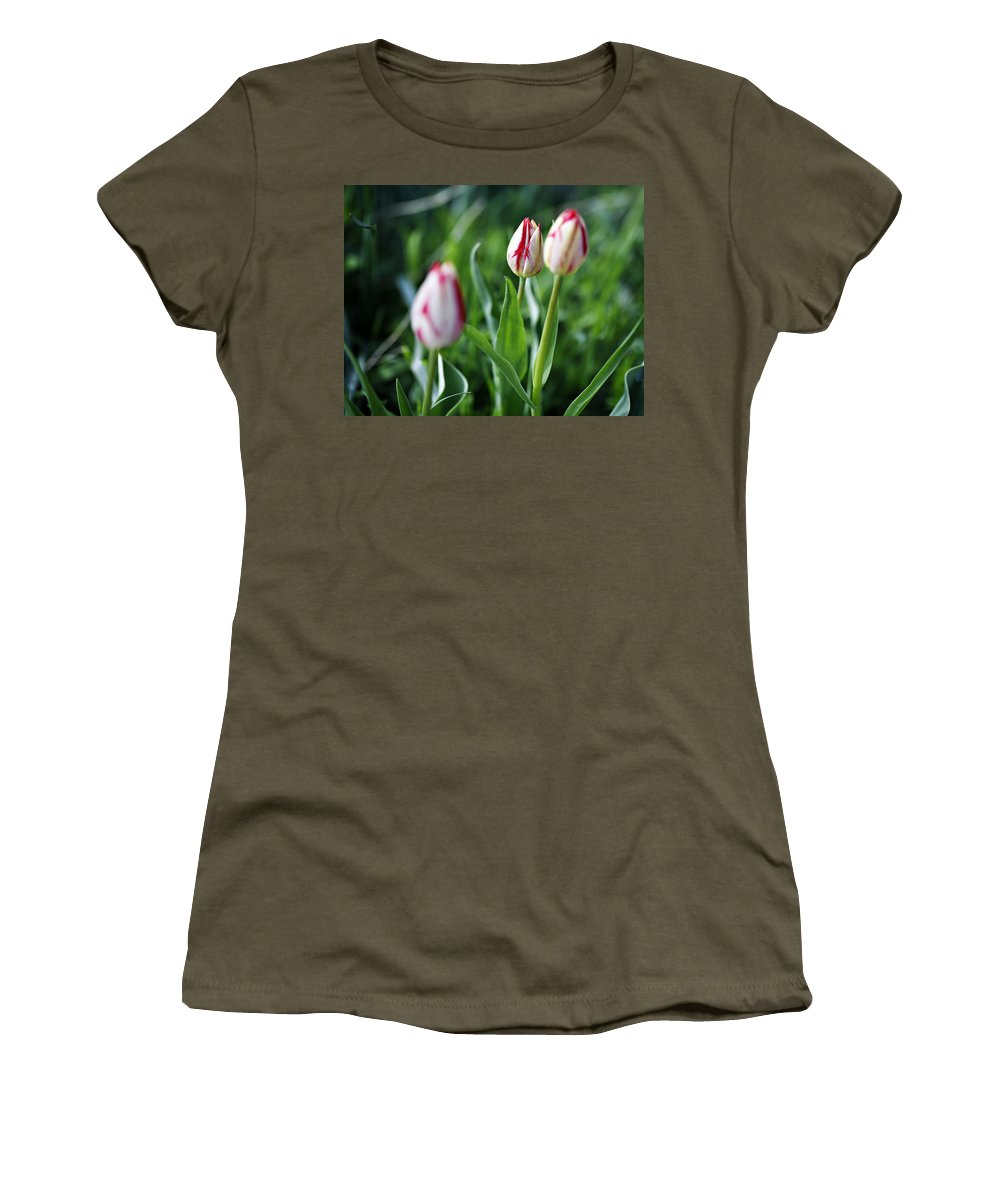Flower Women's T-Shirt (Athletic Fit) featuring the photograph Striped Tulips In Spring by Marilyn Hunt
