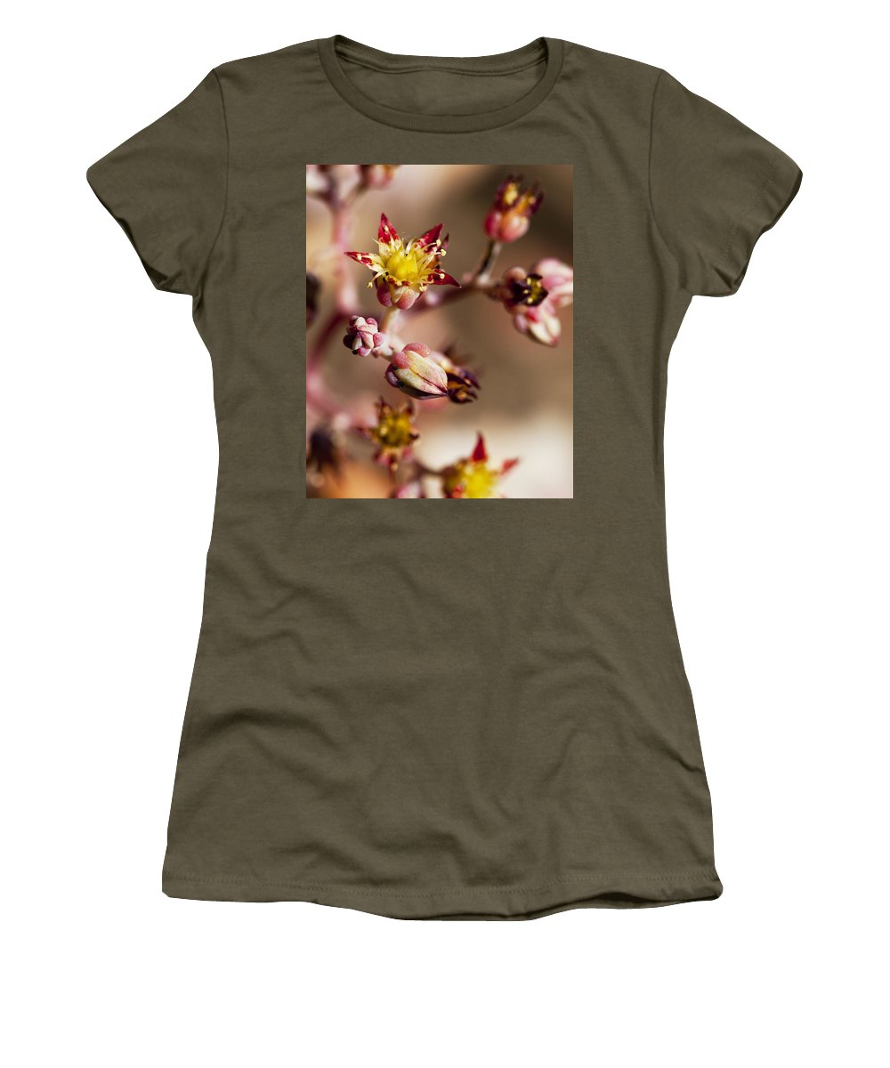 Cactus Women's T-Shirt (Athletic Fit) featuring the photograph Succulent Flowers by Kelley King