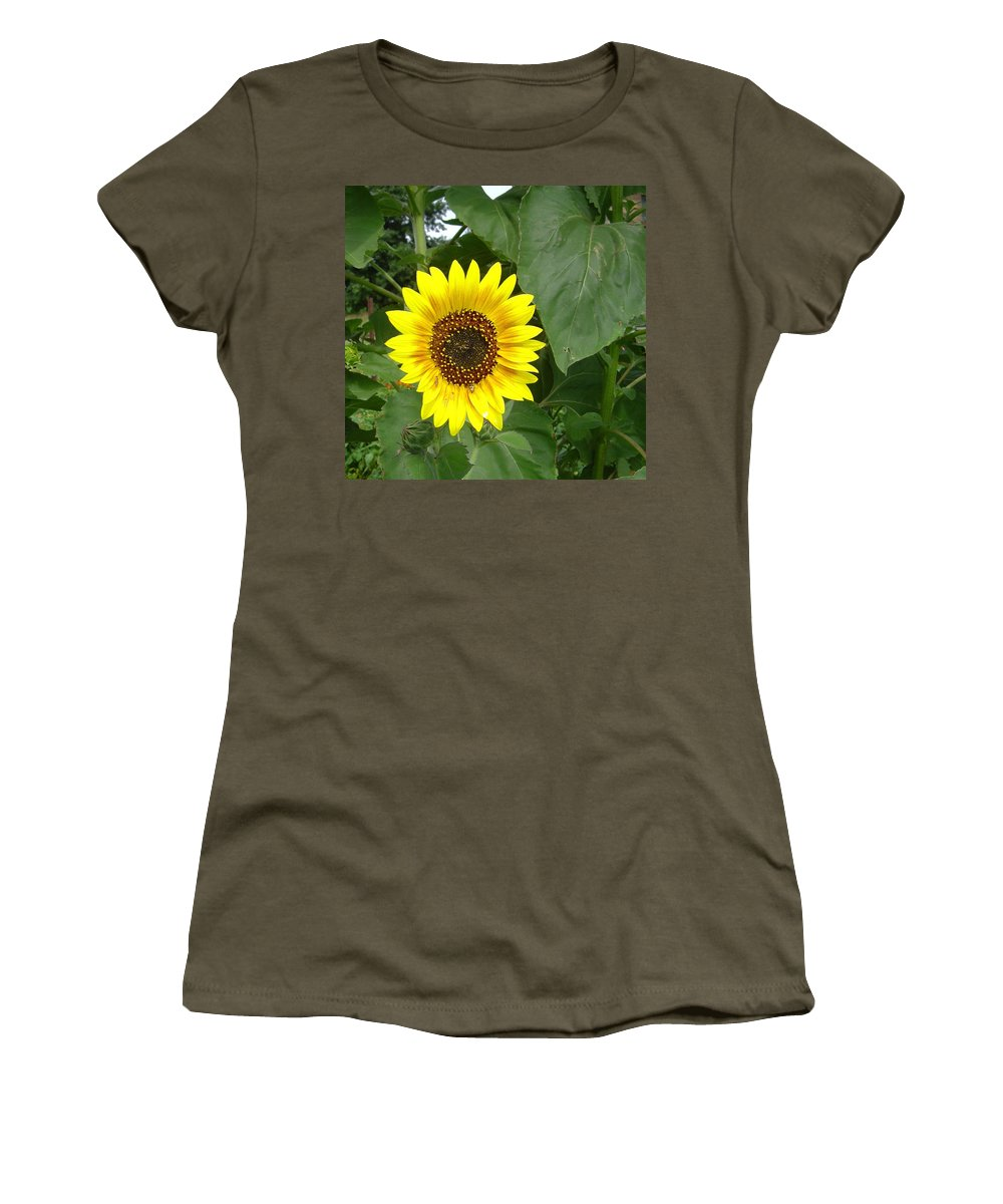 Sunflower Women's T-Shirt featuring the photograph Sunflower 4 by William Moore