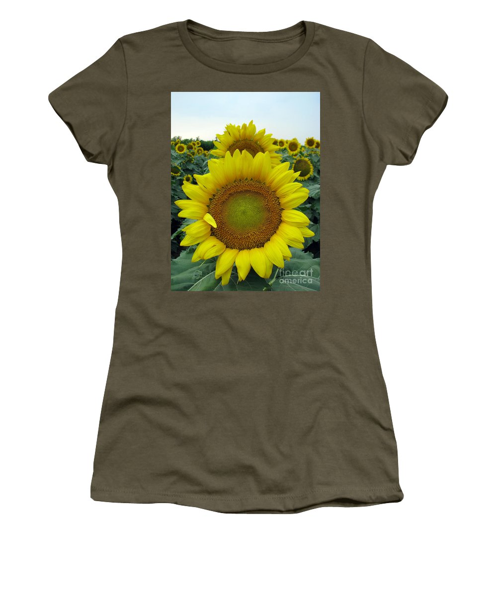Sunflowers Women's T-Shirt (Athletic Fit) featuring the photograph Sunflowers by Amanda Barcon