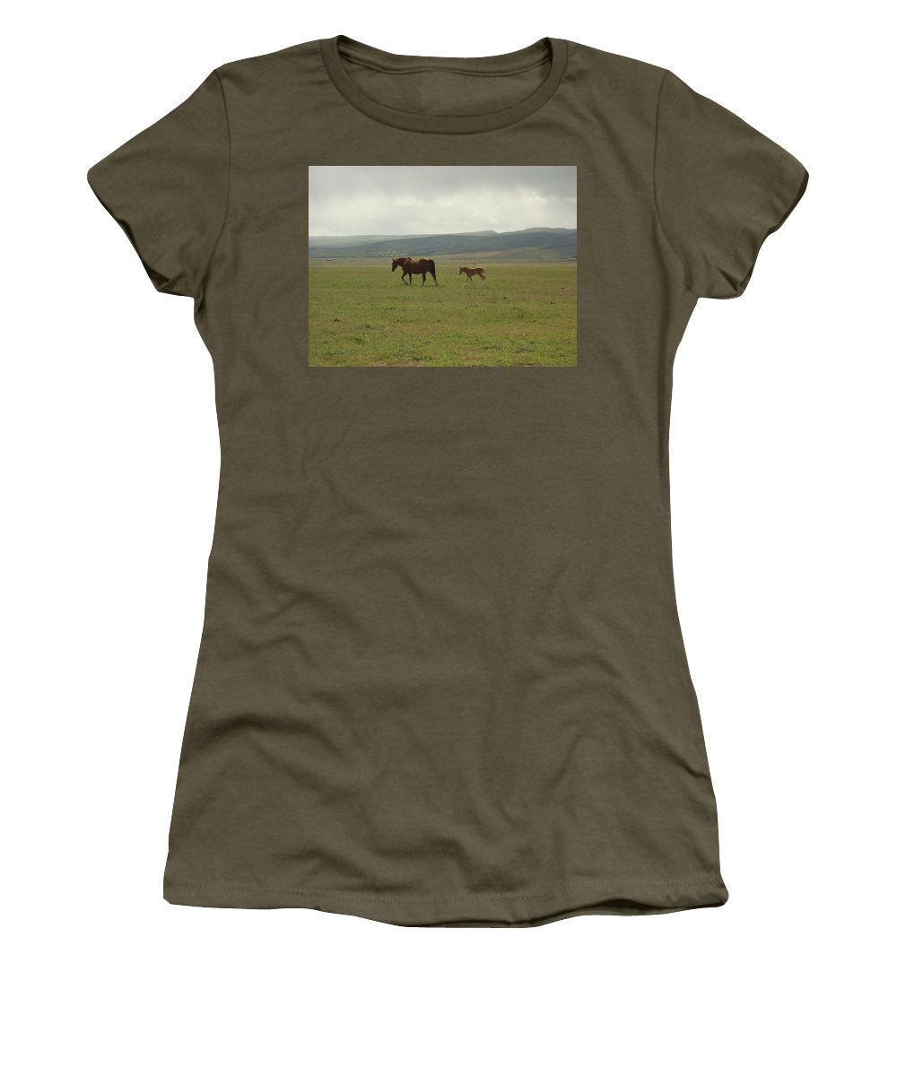 Colt Women's T-Shirt (Athletic Fit) featuring the photograph The Colt by Sara Stevenson
