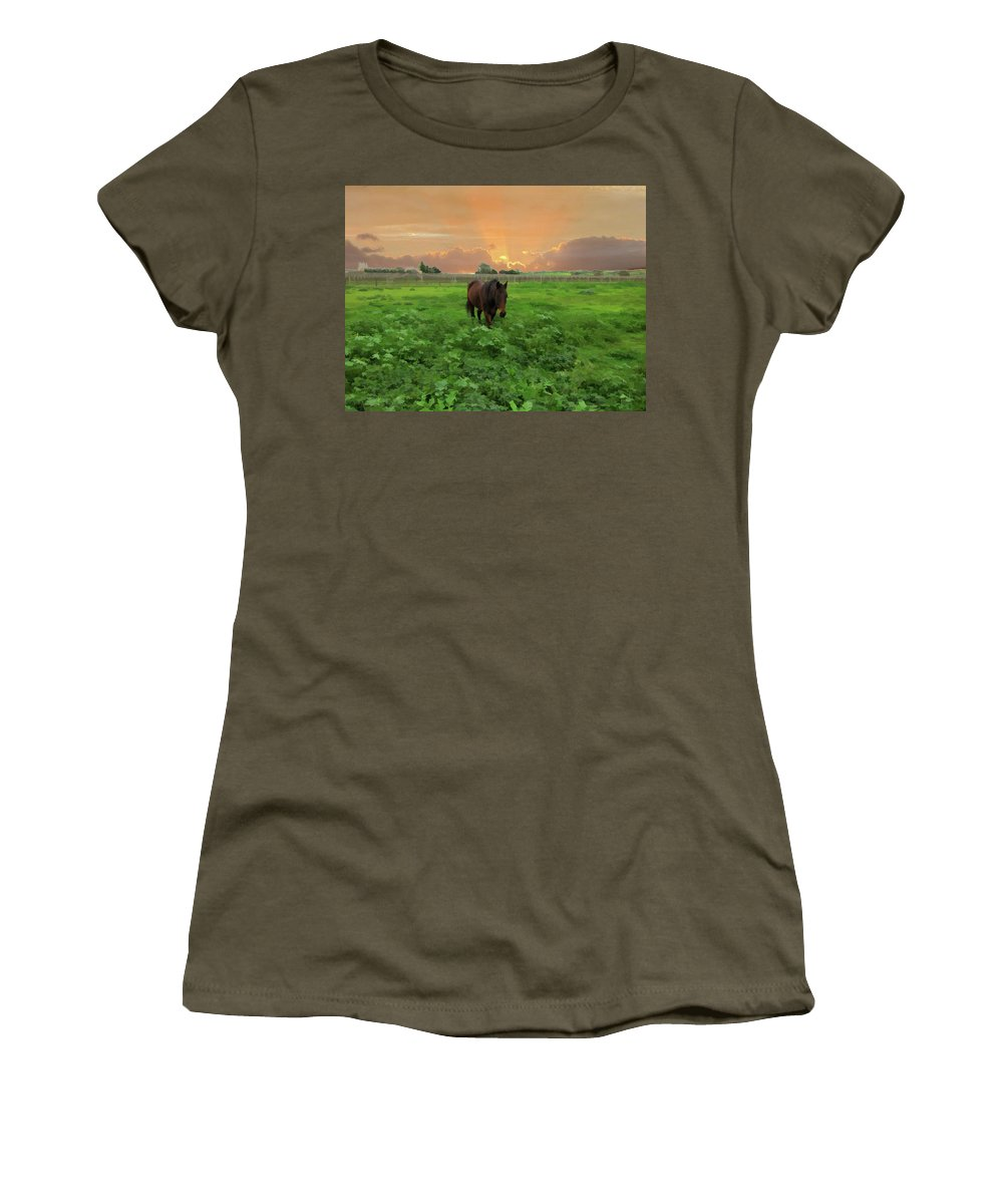 Horse Women's T-Shirt featuring the photograph The Crack Of Dawn by Douglas Barnard