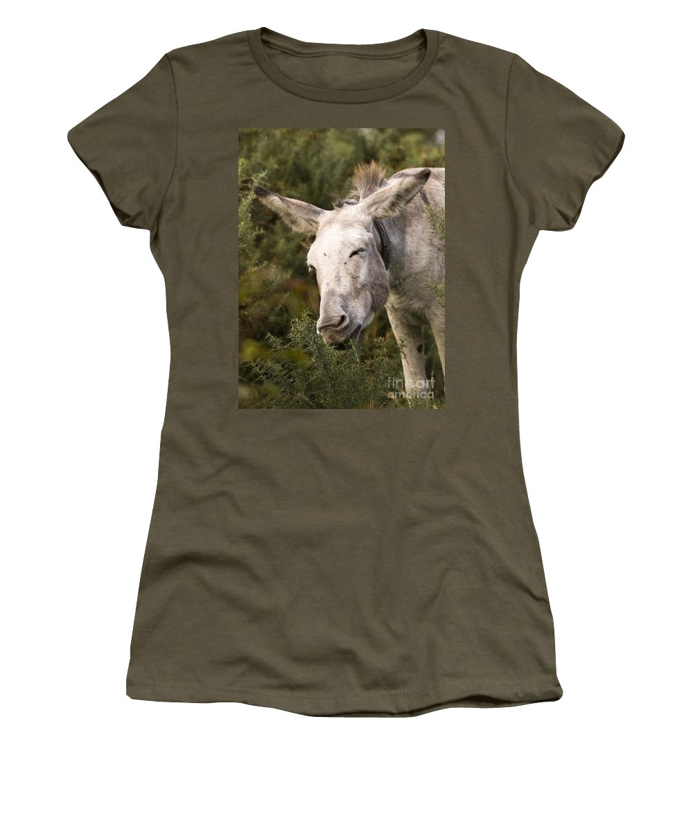 Donkey Women's T-Shirt (Athletic Fit) featuring the photograph the Funny Donkey by Angel Tarantella
