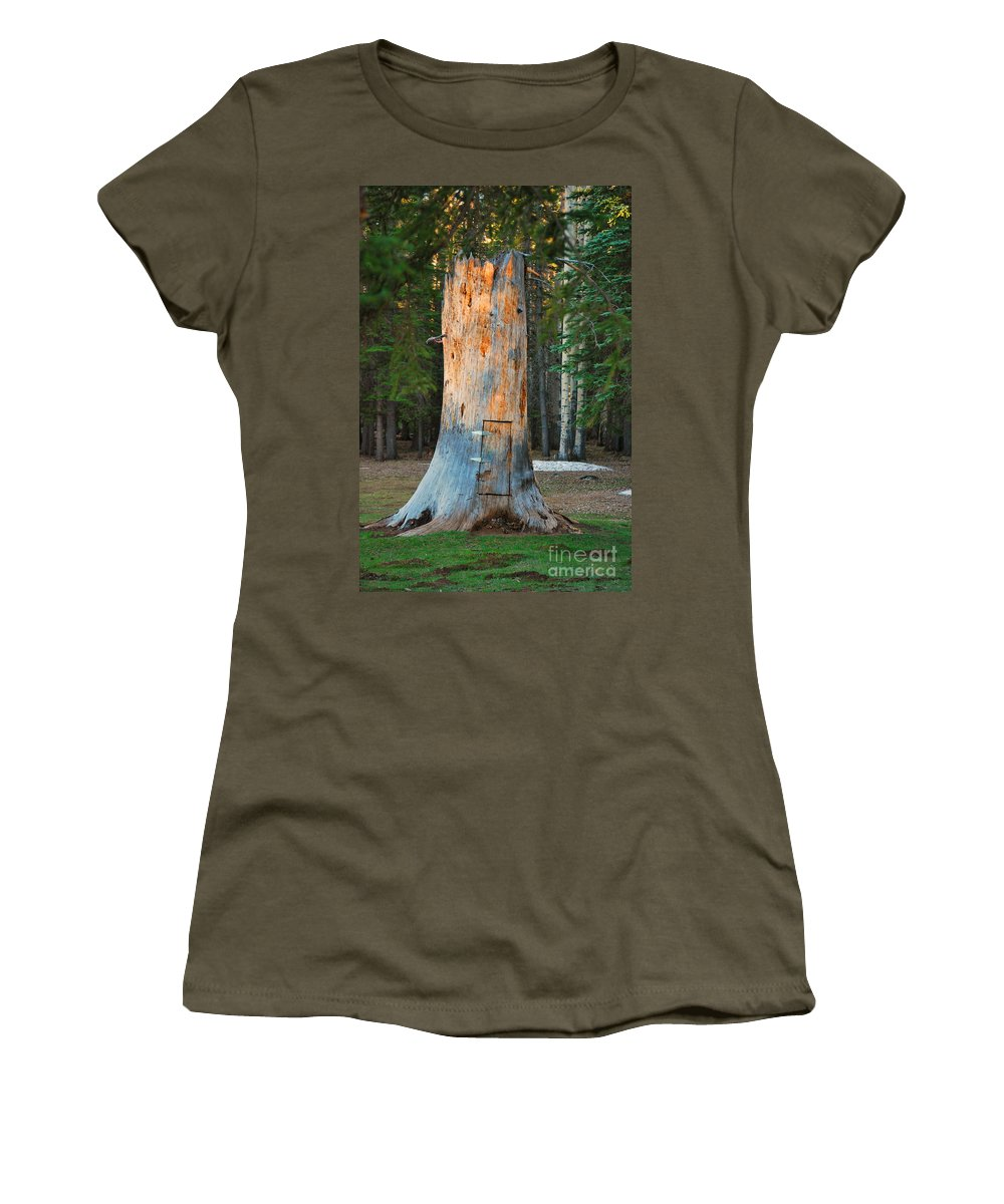 Fine Art Women's T-Shirt featuring the photograph The Hobbit Home by Donna Greene