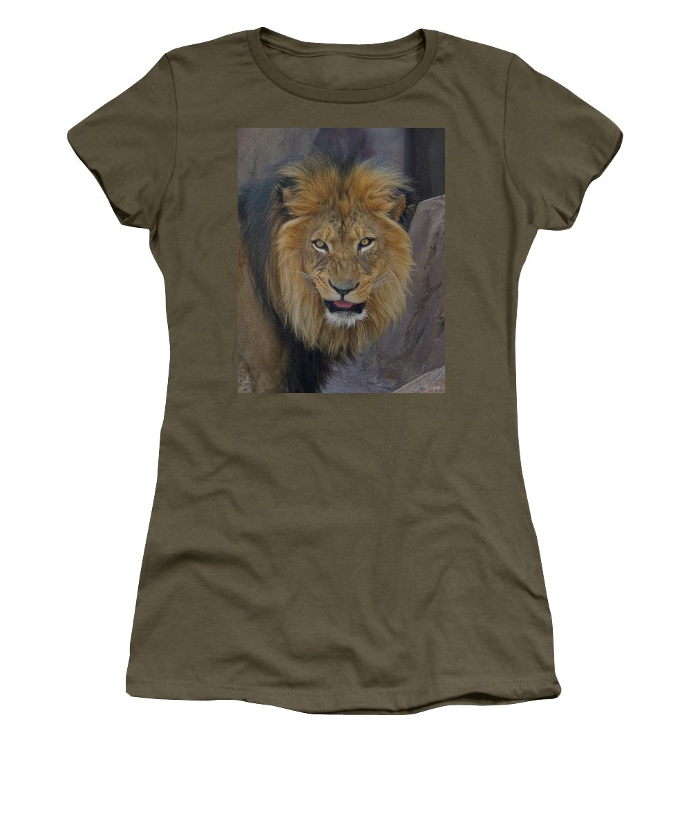 Lion Women's T-Shirt (Athletic Fit) featuring the photograph The Lion Dry Brushed by Ernie Echols