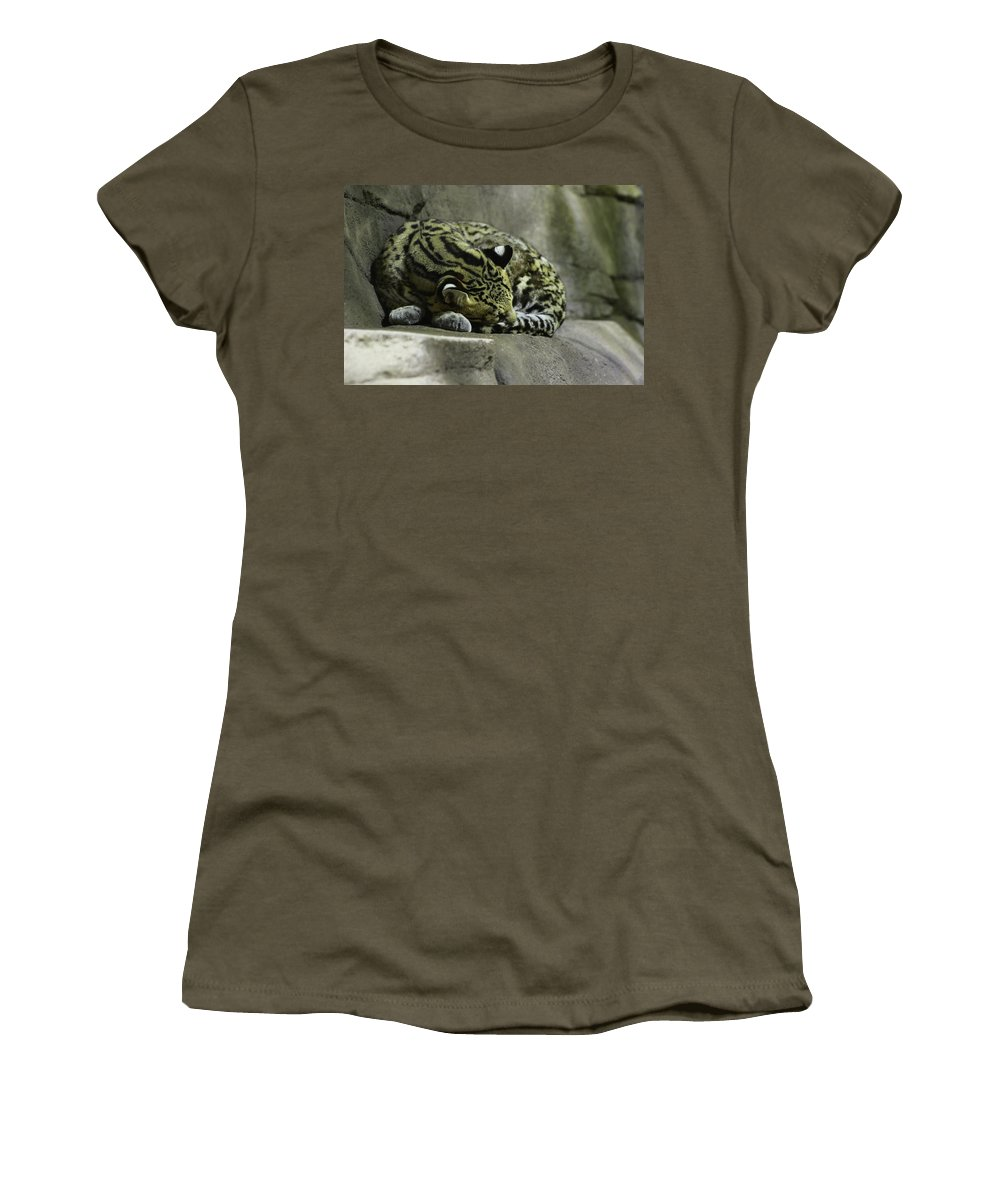 Cat Women's T-Shirt featuring the photograph The Napping Rock by Laddie Halupa