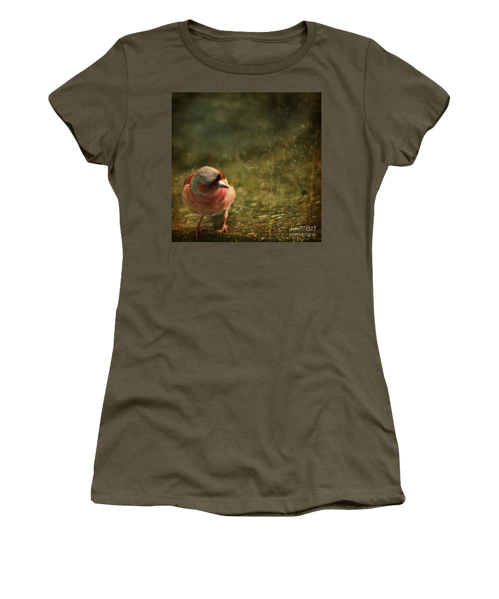 Chaffinch Women's T-Shirt featuring the photograph The Sad Chaffinch by Angel Ciesniarska