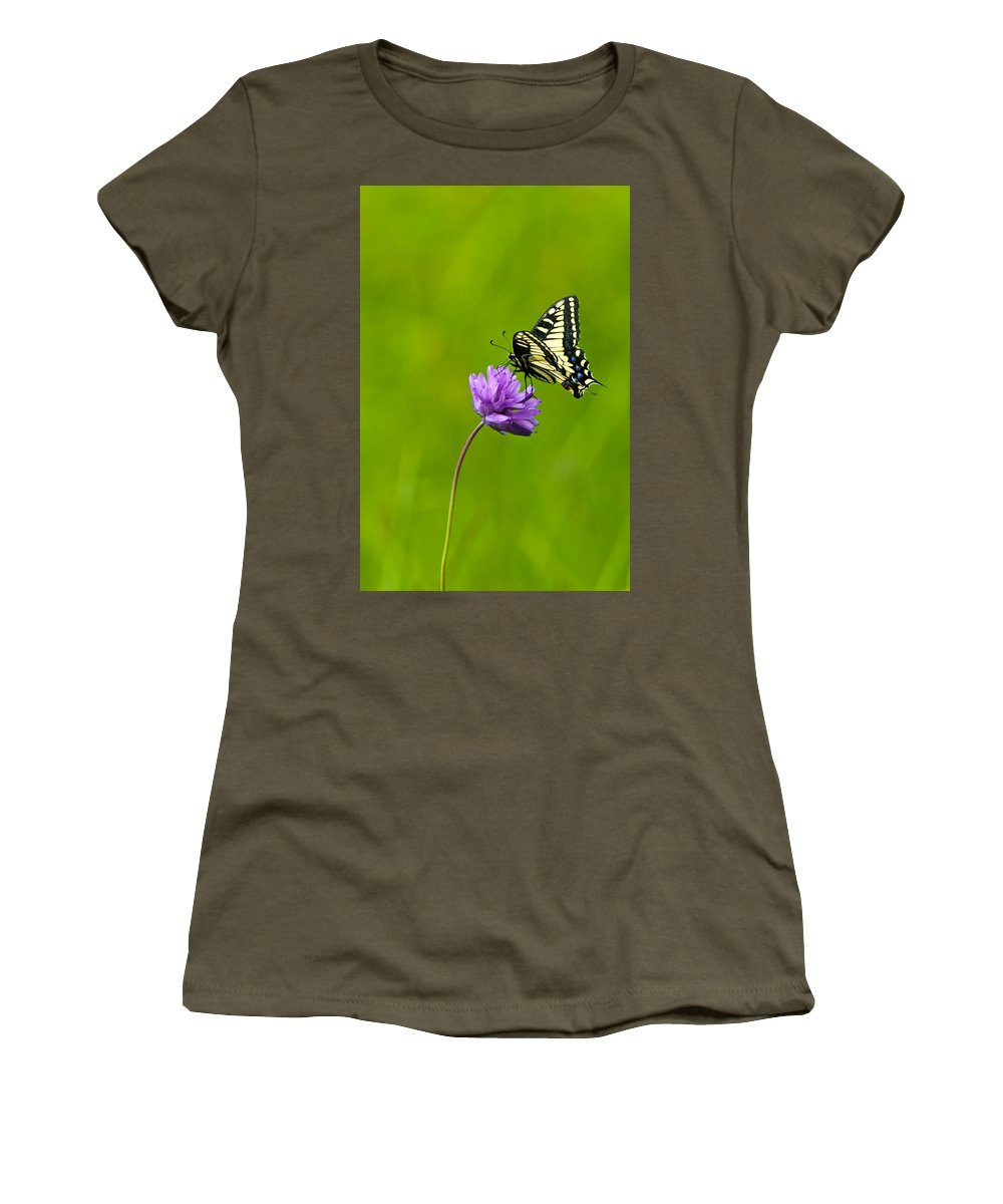 Flora Women's T-Shirt featuring the photograph Tiger Swallowtail by Randall Ingalls