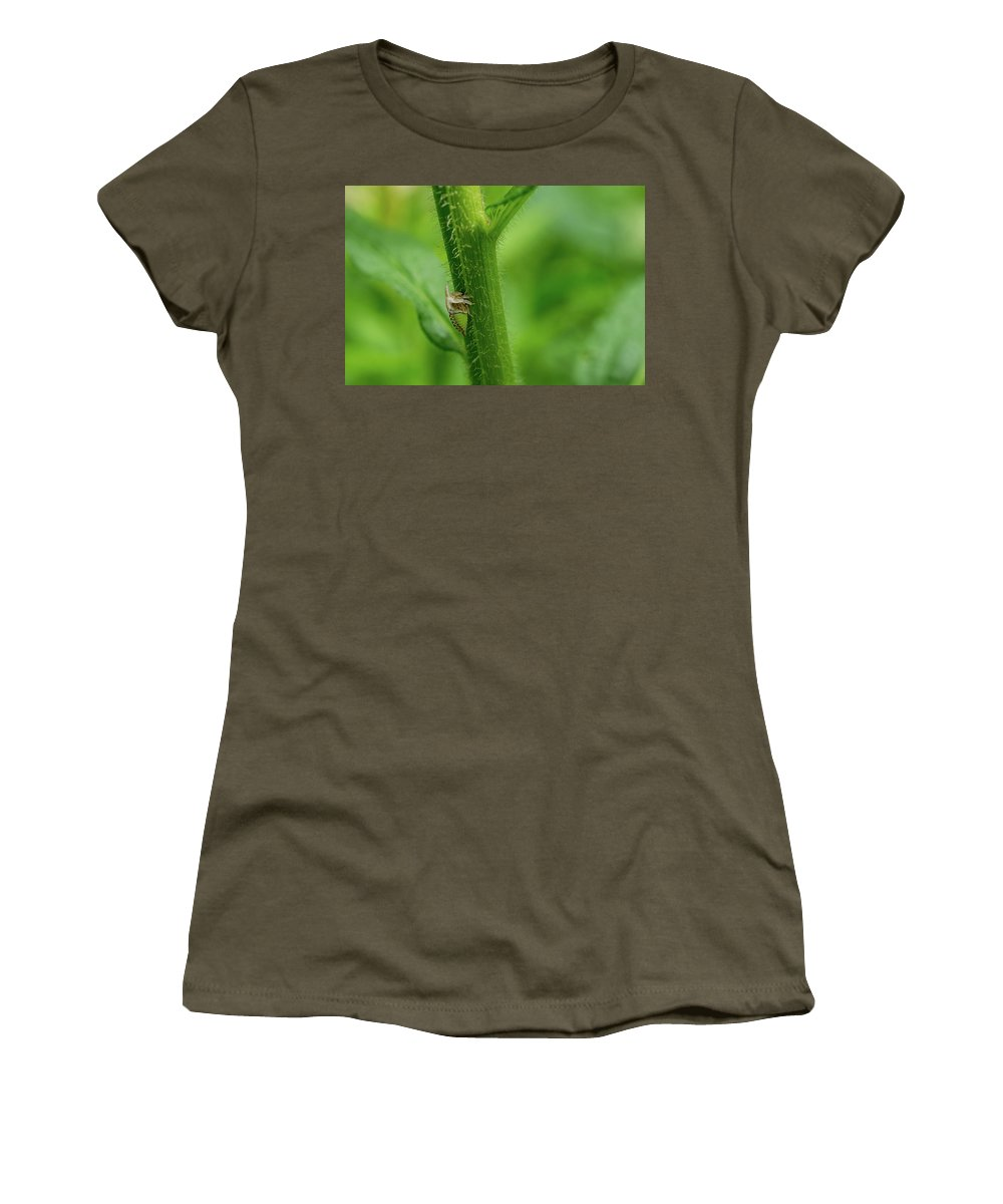 Tiny Women's T-Shirt featuring the photograph Tiny Warior 1 by Linda Howes