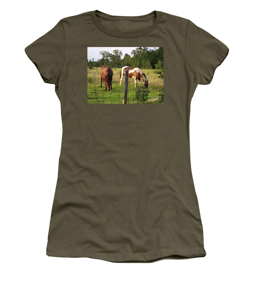 Horse Women's T-Shirt featuring the photograph Tobiano And Bay Horses by Brandy Woods