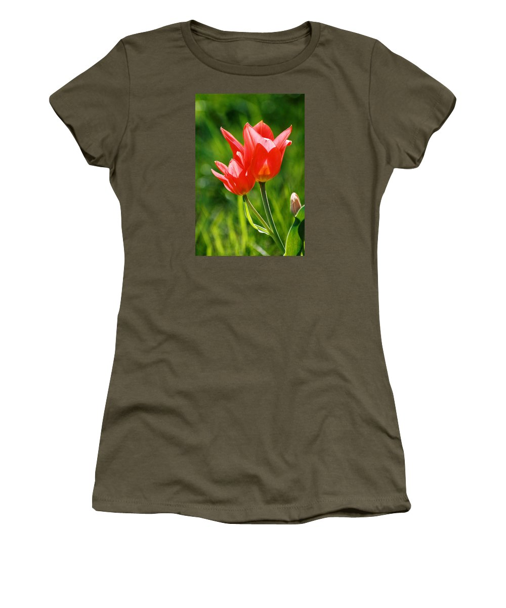 Flowers Women's T-Shirt (Athletic Fit) featuring the photograph Toronto Tulip by Steve Karol