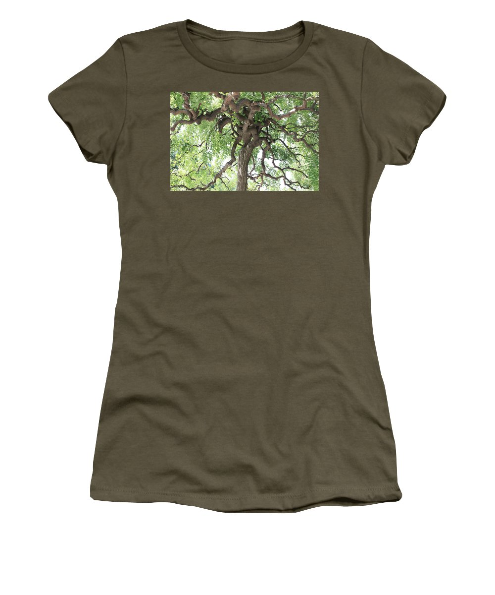 Tree Women's T-Shirt featuring the photograph Tree At Ming Tombs by Carol Groenen