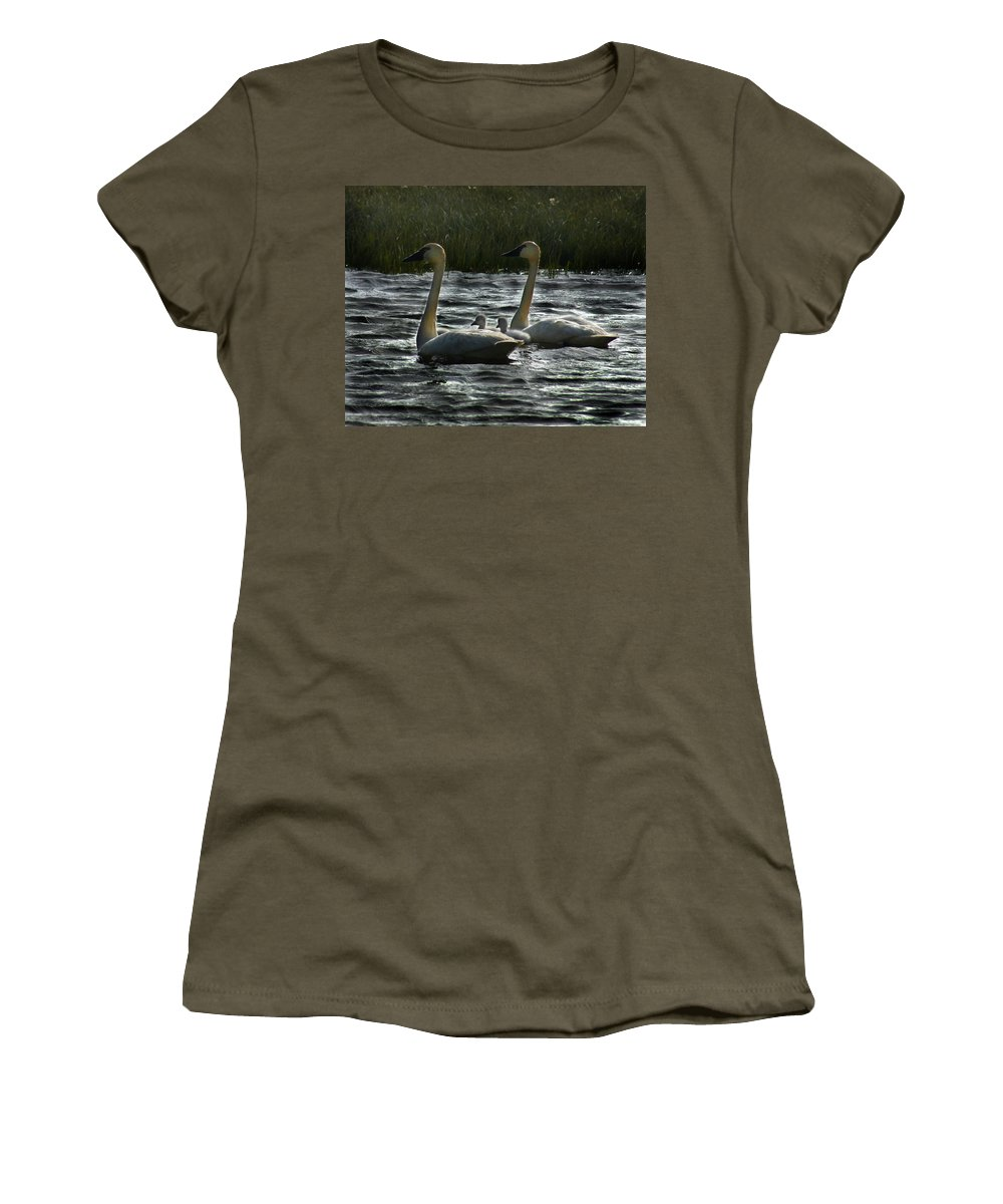 Tundra Swans Women's T-Shirt (Athletic Fit) featuring the photograph Tundra Swans by Anthony Jones
