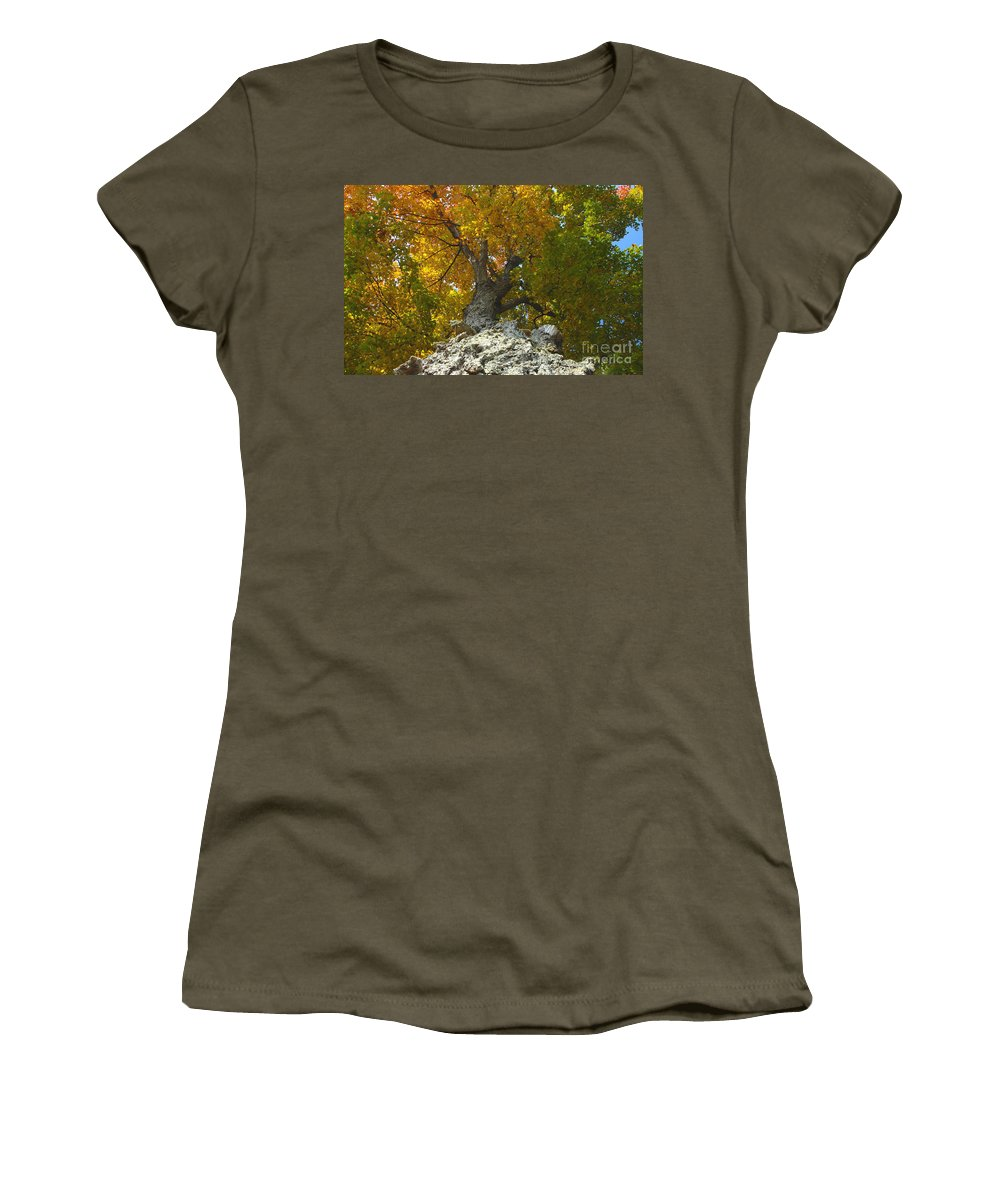 Fall Women's T-Shirt (Athletic Fit) featuring the photograph Turning Colors by David Lee Thompson
