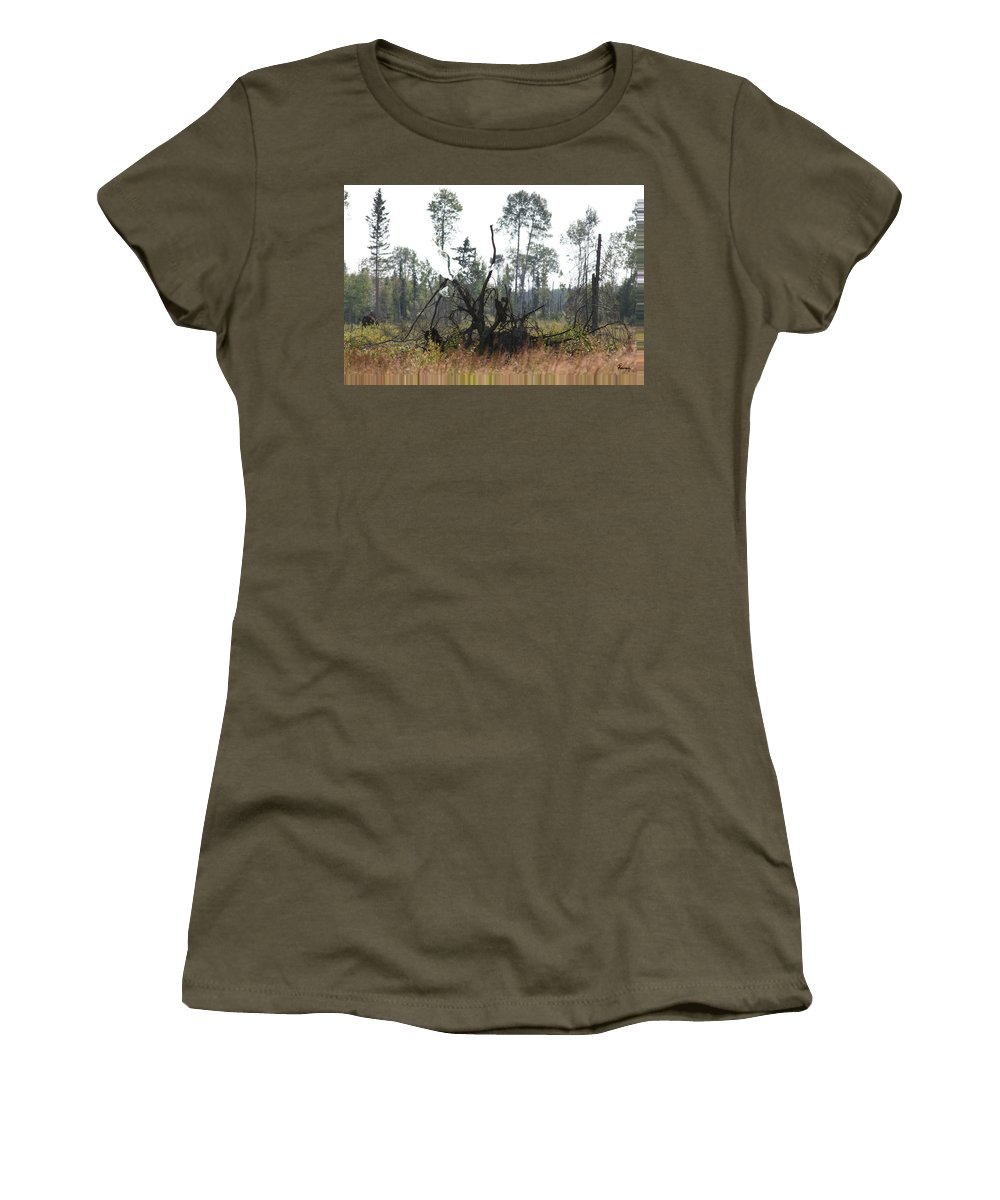 Roots Tree Stump Hawk Bird Wild Forest Nature Feeling Abstract Women's T-Shirt featuring the photograph Uprooted by Andrea Lawrence
