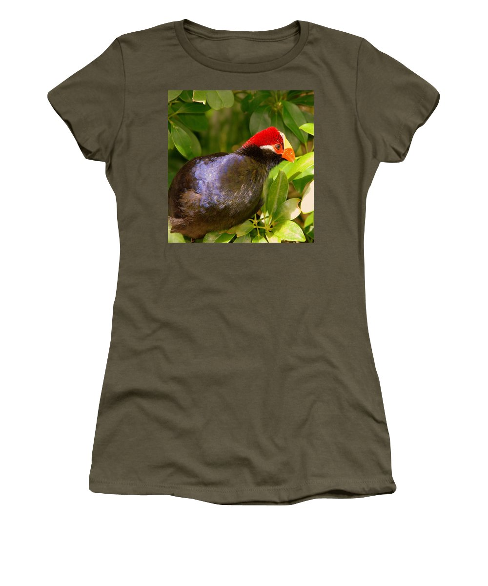 Violet Plantain Eater Women's T-Shirt (Athletic Fit) featuring the photograph Violet Plantain Eater by Susanne Van Hulst