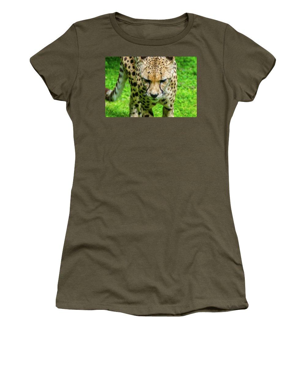 Wildlife Women's T-Shirt featuring the photograph Walking Cheeta by Rainer Kersten