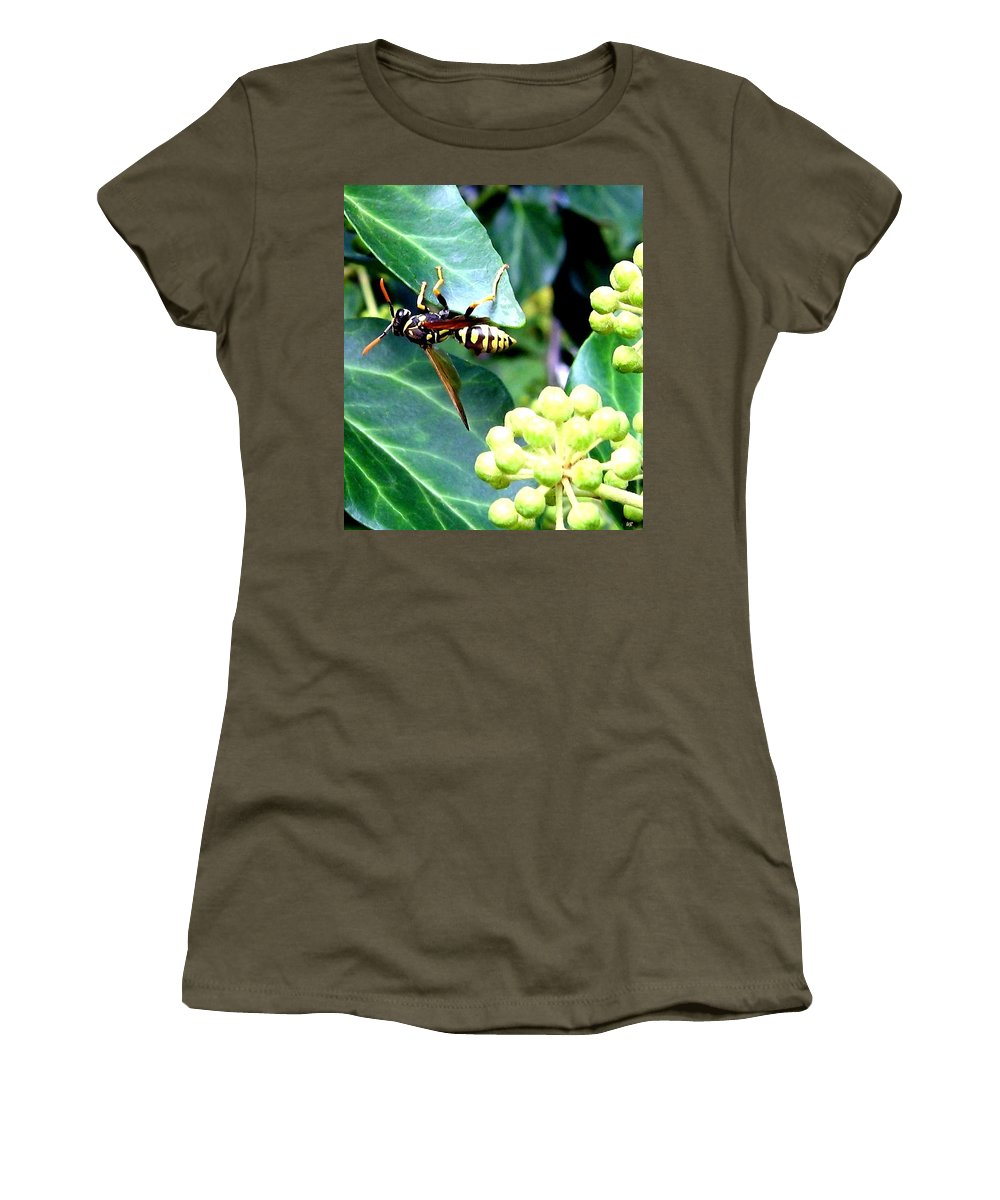 Wasp Women's T-Shirt featuring the photograph Wasp On The Ivy by Will Borden