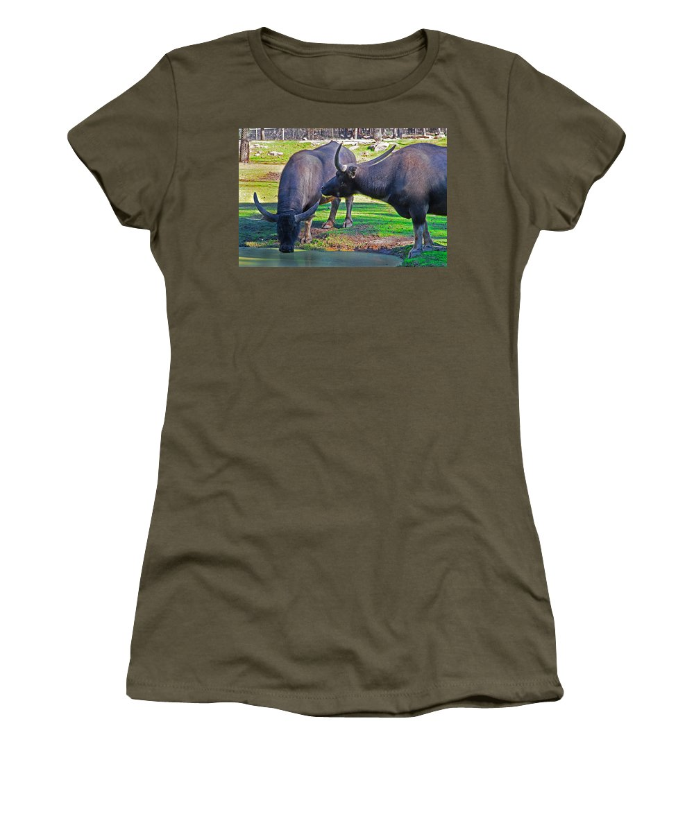 Asian Water Women's T-Shirt featuring the photograph Watching 2 Water Buffalos 1 Water Buffalo Watching Me by Miroslava Jurcik