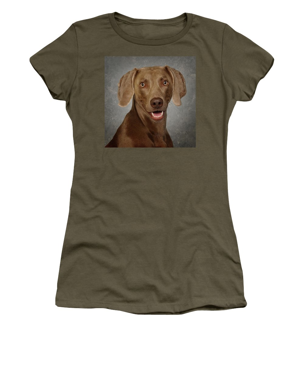 Dog Women's T-Shirt (Athletic Fit) featuring the photograph Weimaraner by Greg Mimbs