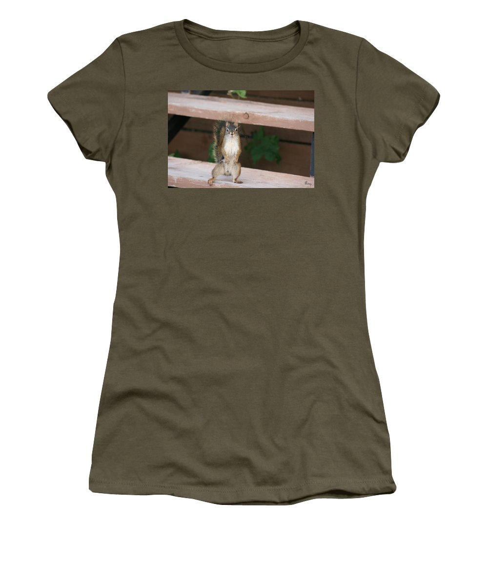Squirrel Mother Nature Wild Animal Cute Dancing Women's T-Shirt featuring the photograph What You Lookin At by Andrea Lawrence