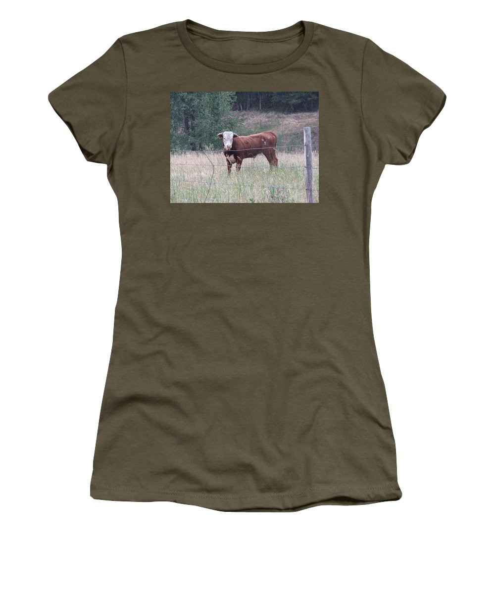 Bull Women's T-Shirt (Athletic Fit) featuring the photograph Whatchu Lookin At by Stacey May