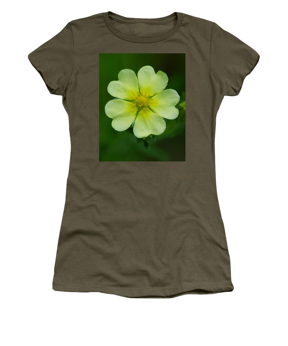 Flowers Women's T-Shirt featuring the photograph Wheel Of Hearts by Ben Upham III